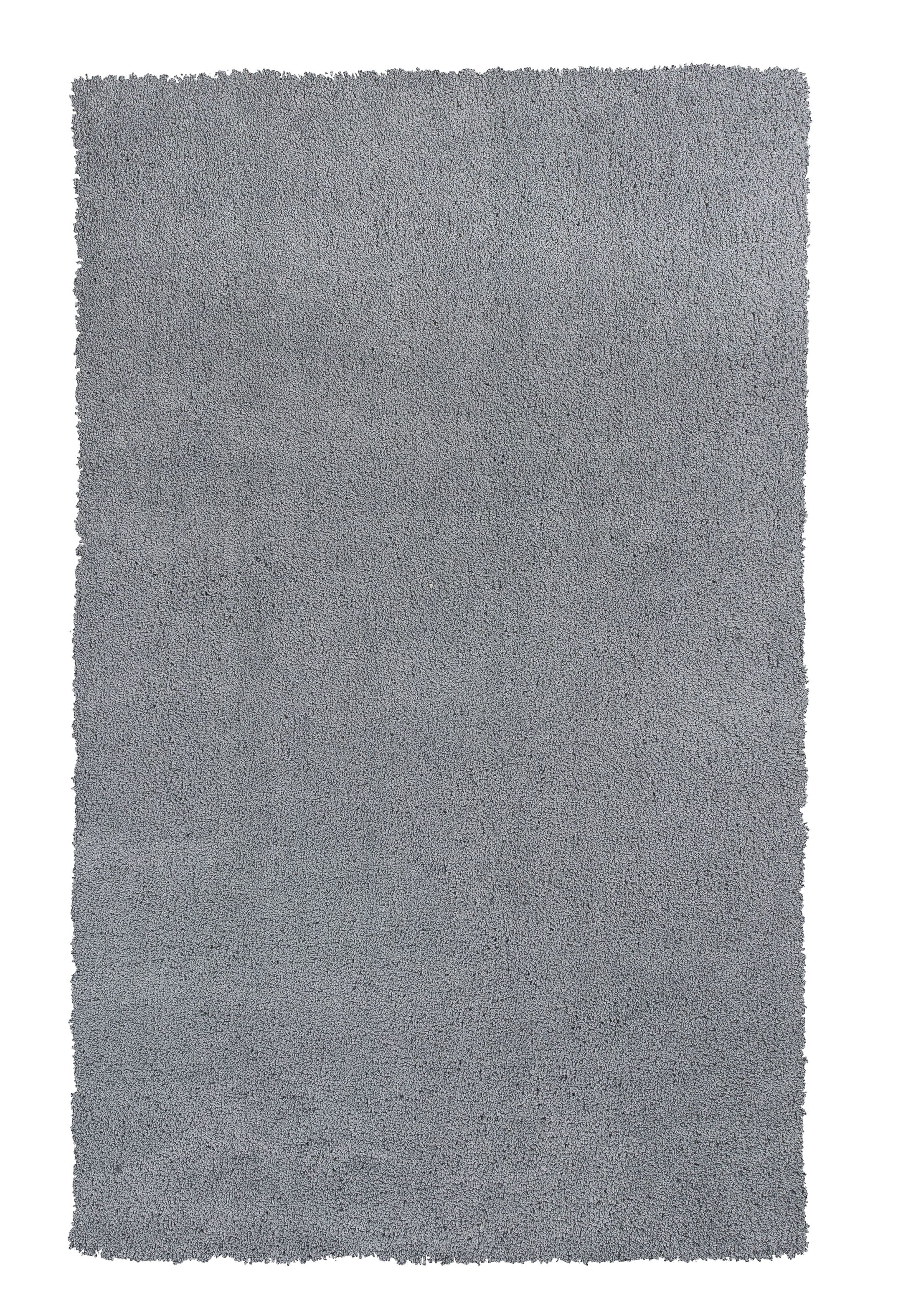 Bouvier Gray Area Rug Rug Size: Rectangle 9' x 13'