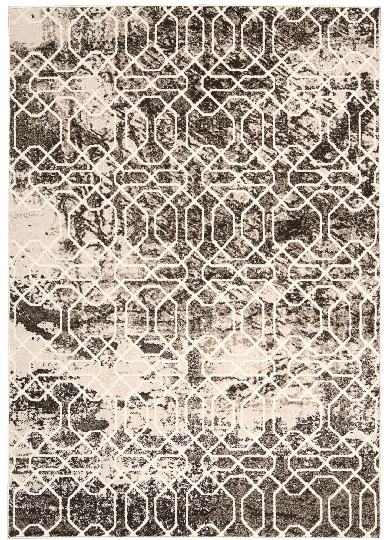 Floria Ivory/Black Area Rug Rug Size: Rectangle 5'3