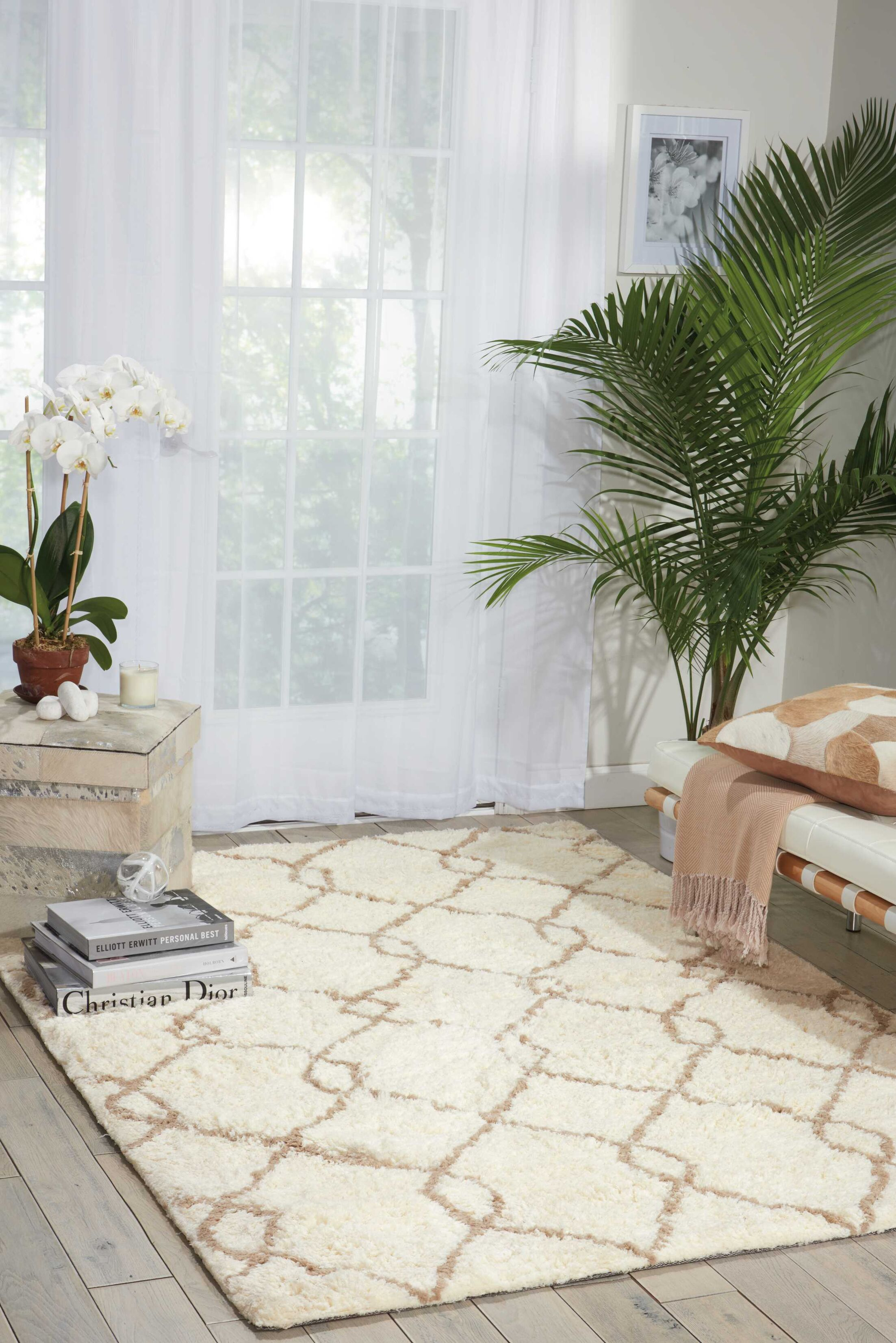 North Moore Hand-Tufted Ivory/Tan Area Rug Rug Size: Rectangle 5' x 7'