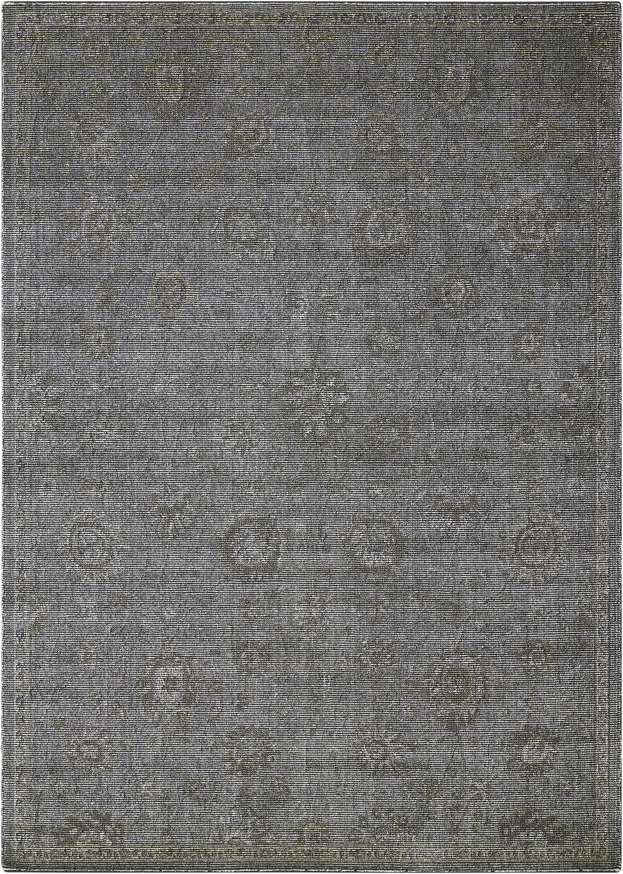 Diona Graphite Area Rug Rug Size: Rectangle 5'3
