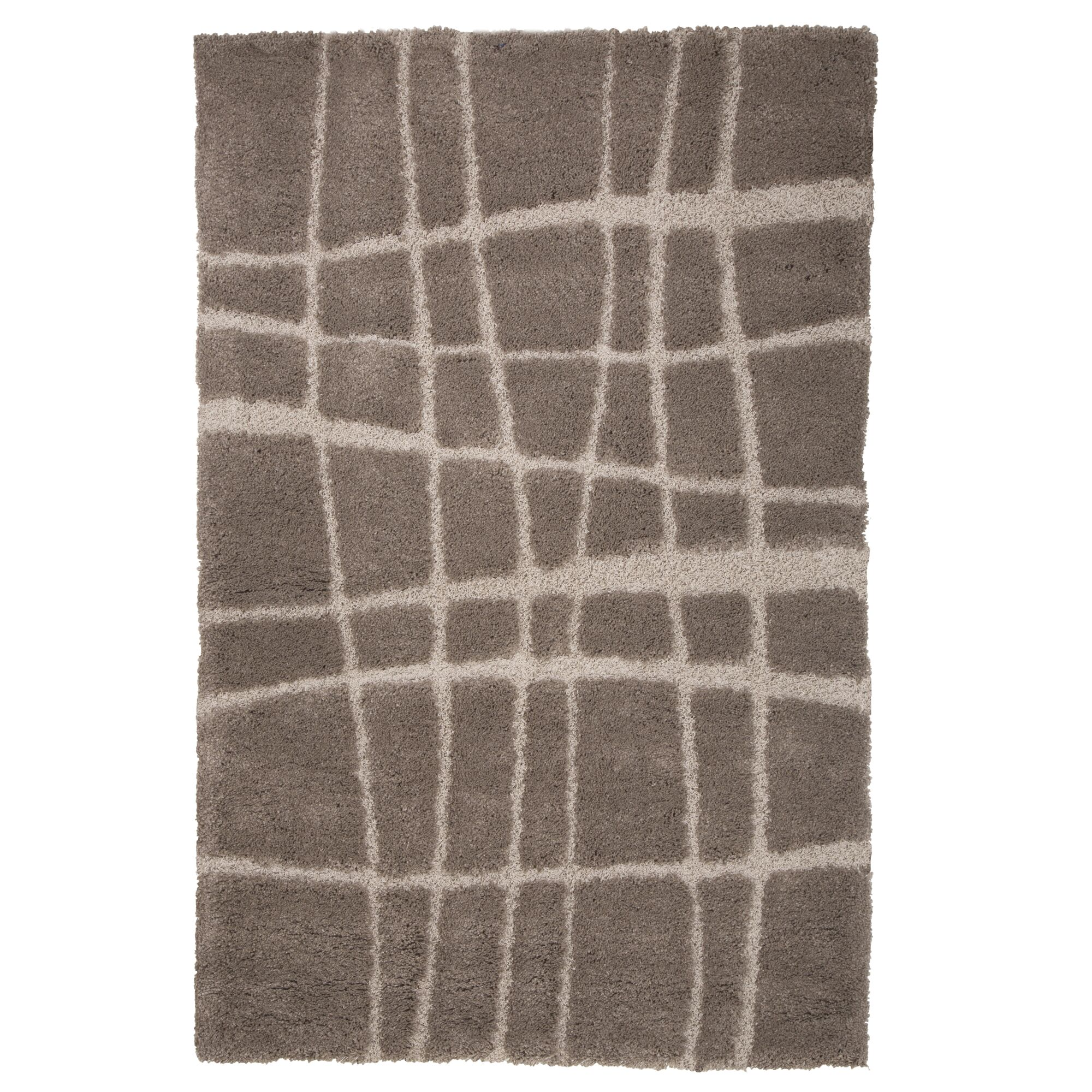 Danil Hand-Woven Brown Area Rug Rug Size: 4' x 6'