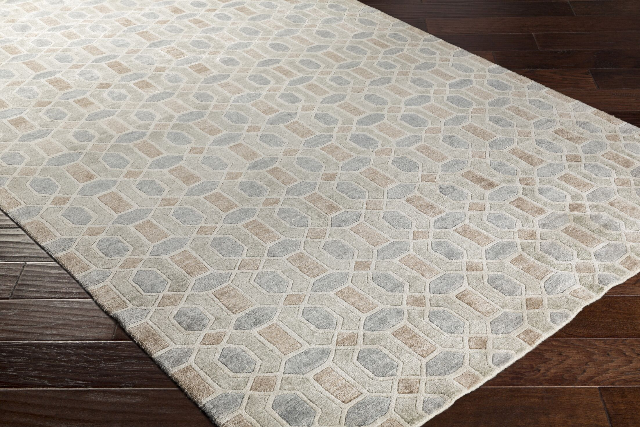 Arline Hand-Knotted Beige/Gray Area Rug Rug Size: Rectangle 2' x 3'