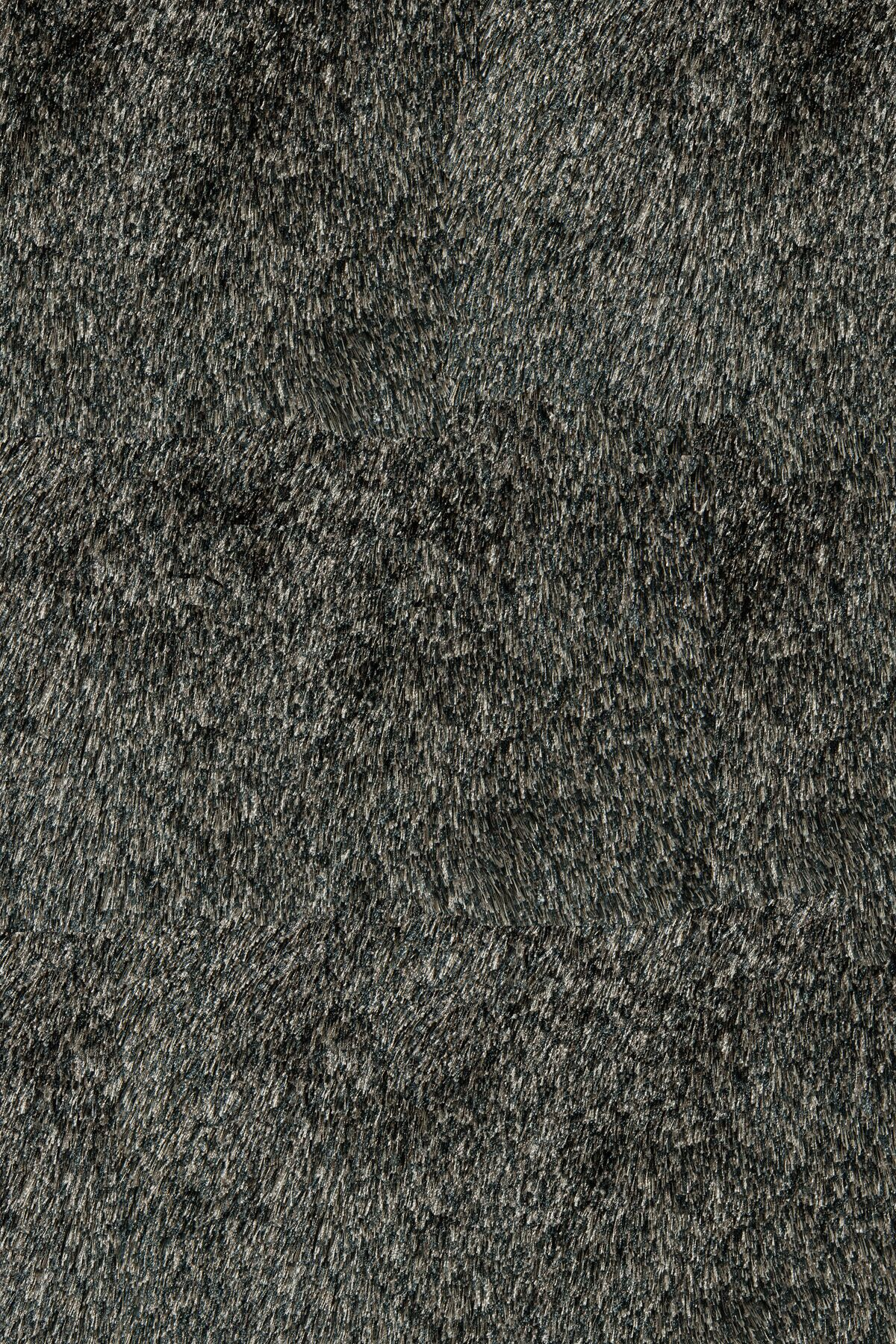 Ciera Hand-Tufted Carbon Area Rug Rug Size: Rectangle 9' x 12'