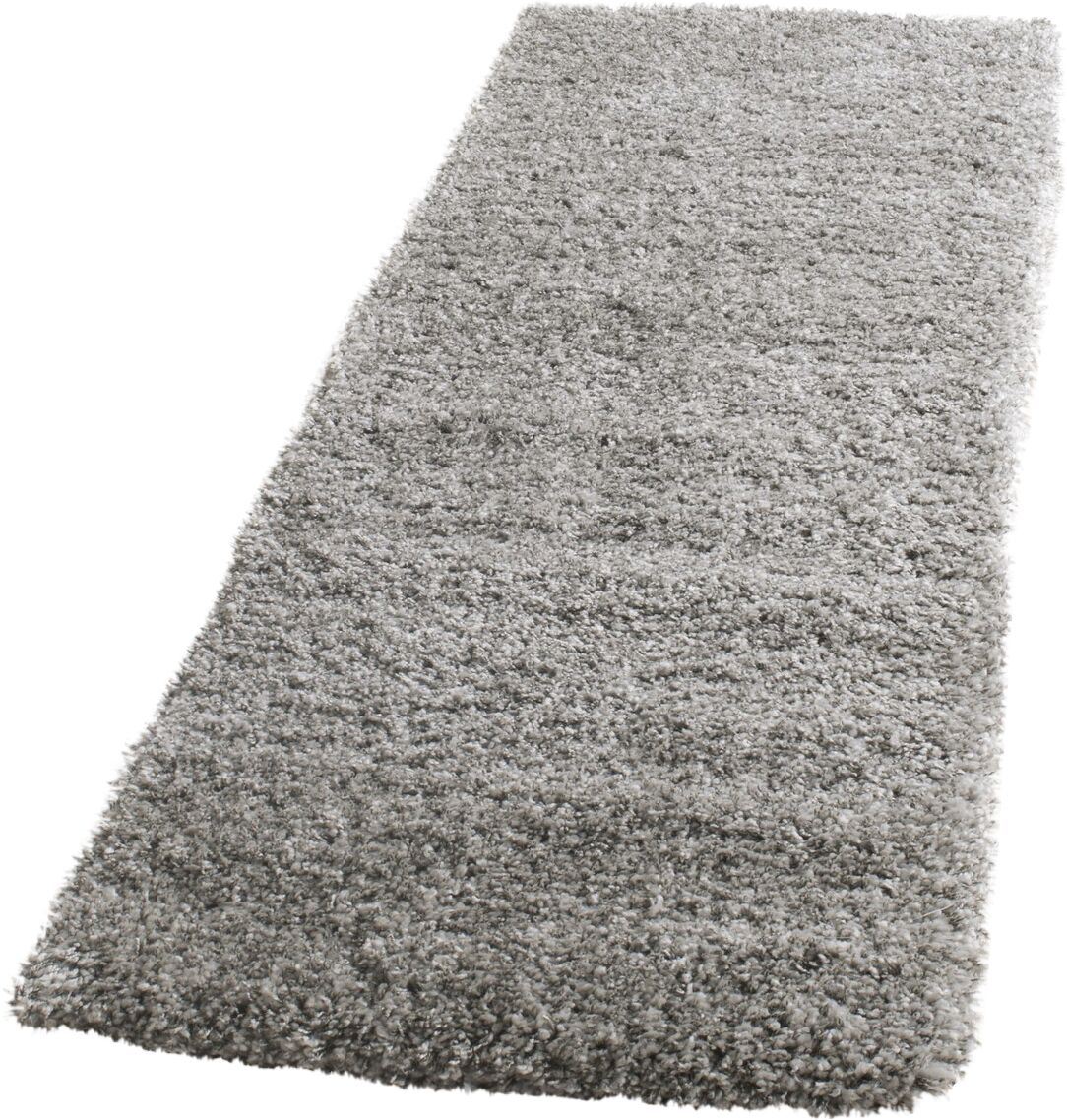 Thaddeus Colorway Silver Area Rug Rug Size: Runner 2'3