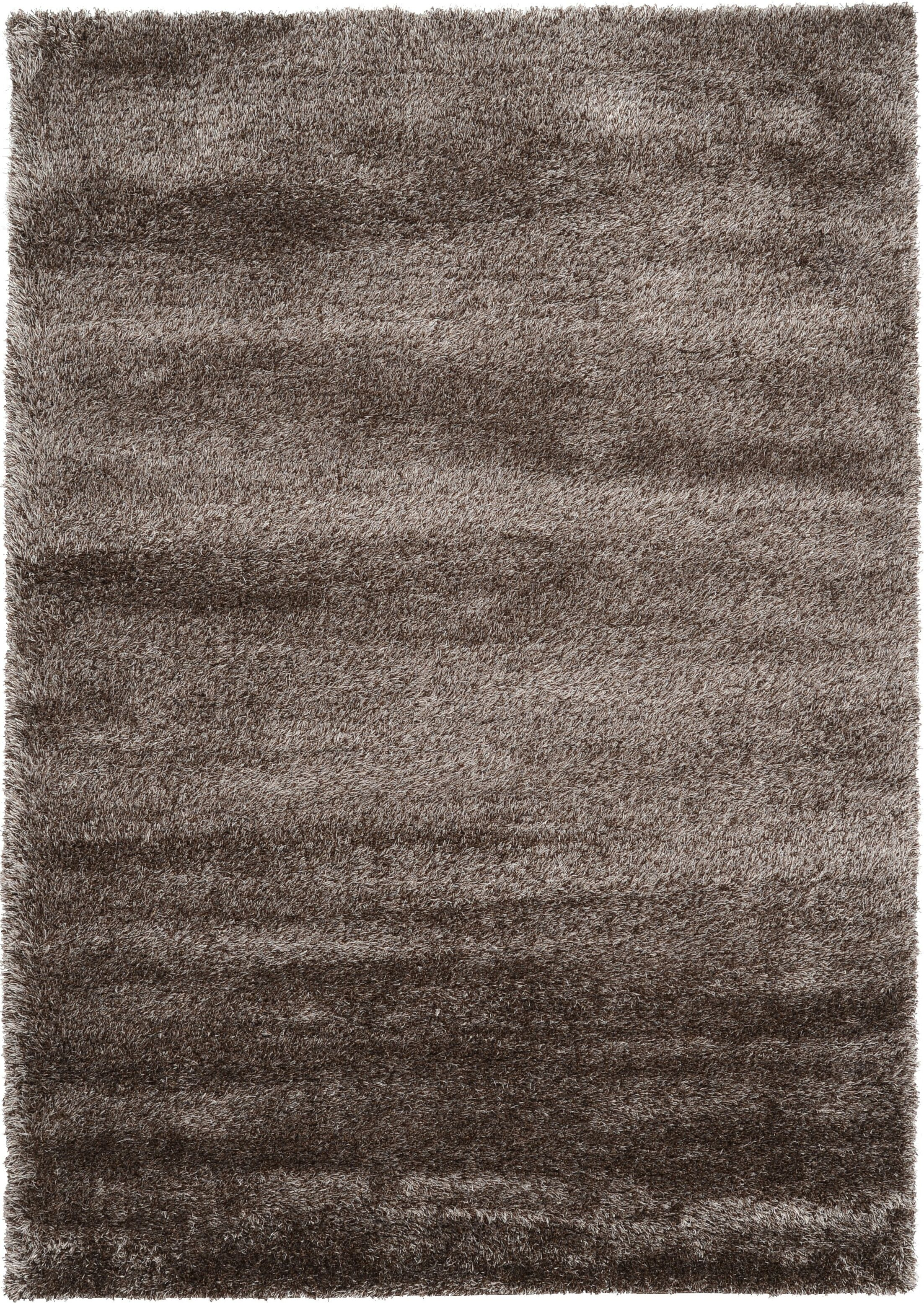 Evelyn Pinecone Brown Area Rug Rug Size: Rectangle 7' x 10'