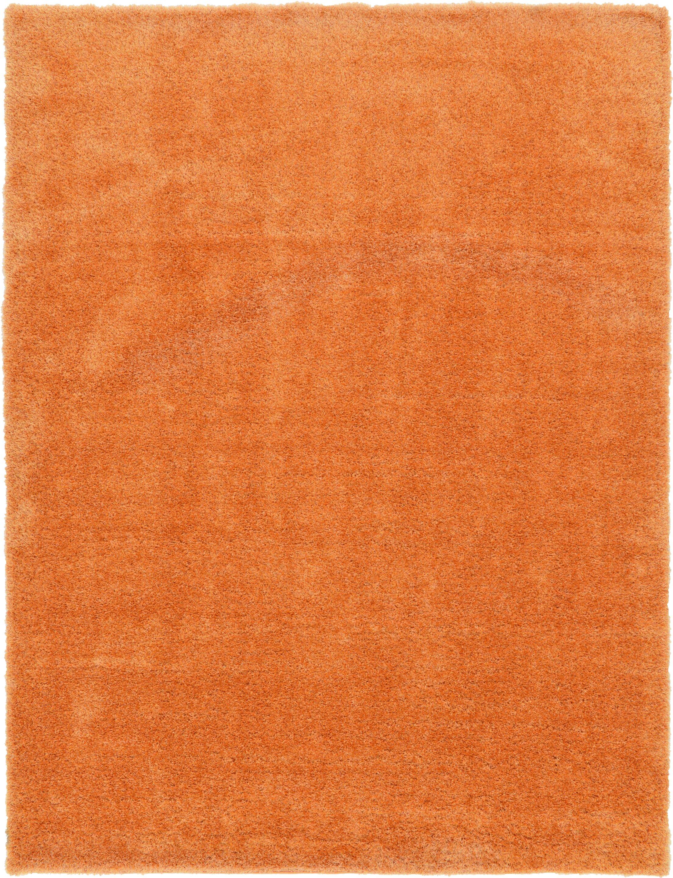 Evelyn Orange Area Rug Rug Size: Rectangle 9' x 12'
