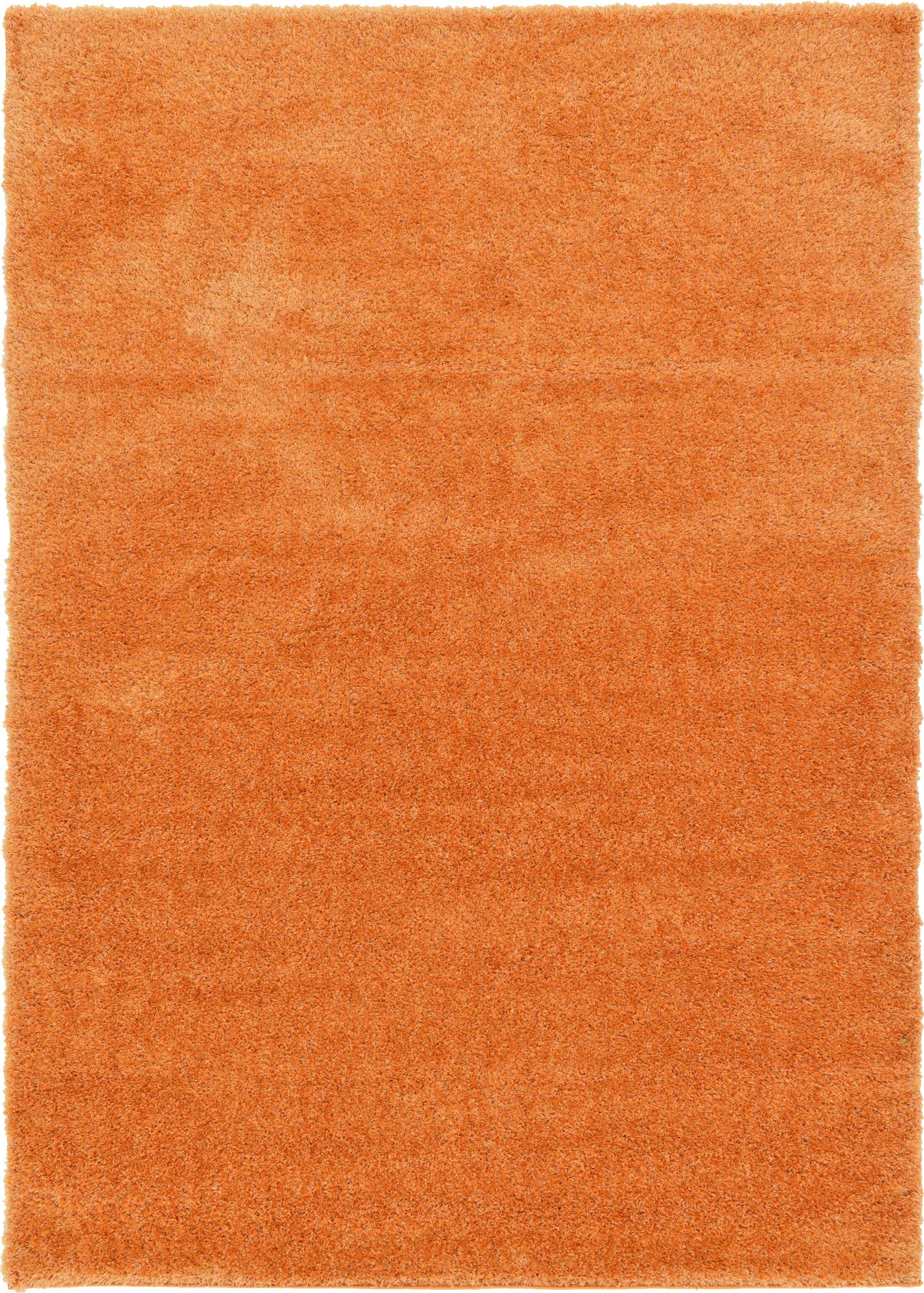 Evelyn Orange Area Rug Rug Size: Rectangle 7' x 10'