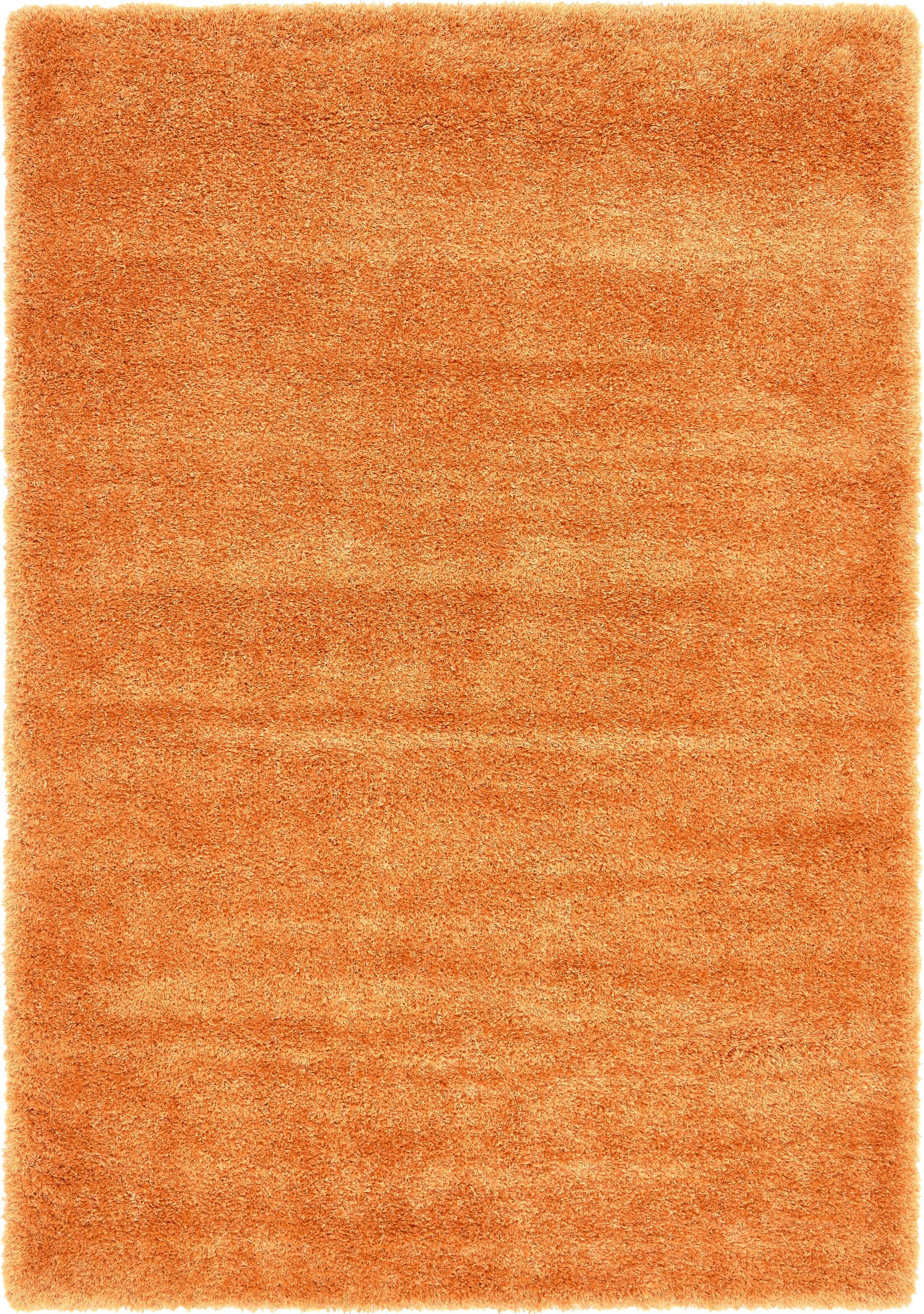 Evelyn Orange Area Rug Rug Size: Rectangle 6' x 9'