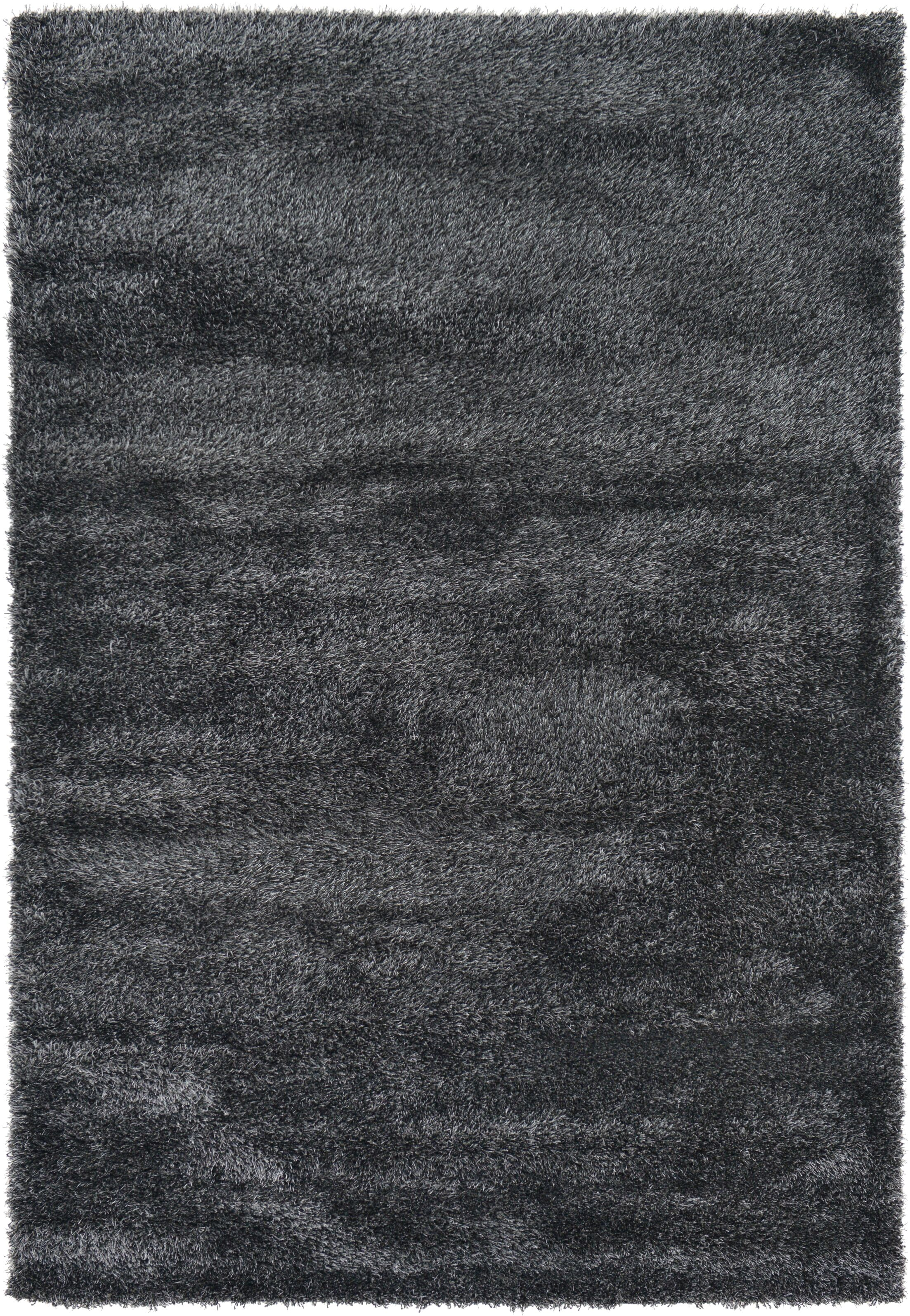 Evelyn Black Area Rug Rug Size: Rectangle 6' x 9'
