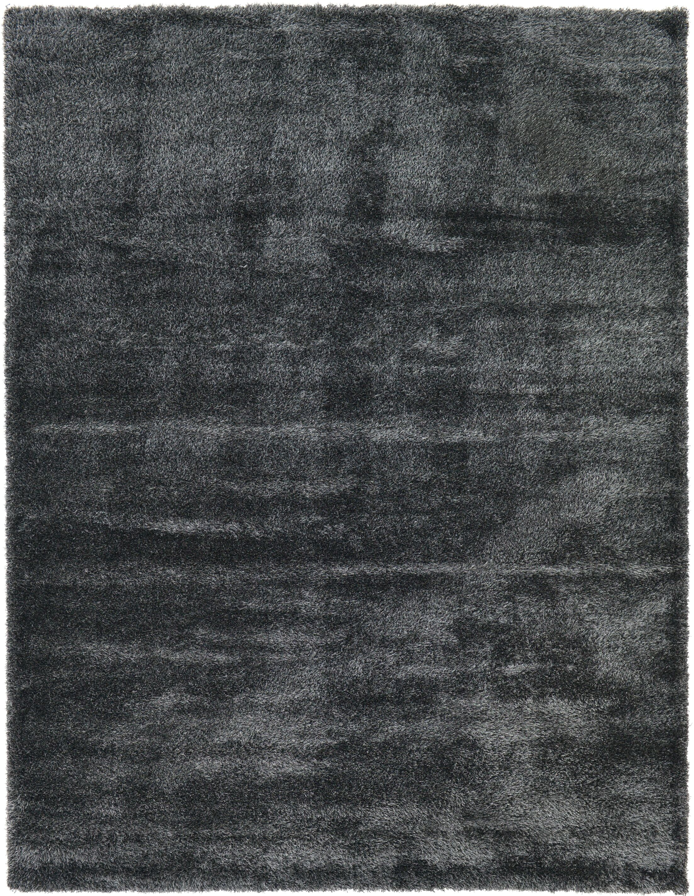 Evelyn Black Area Rug Rug Size: Rectangle 10' x 13'