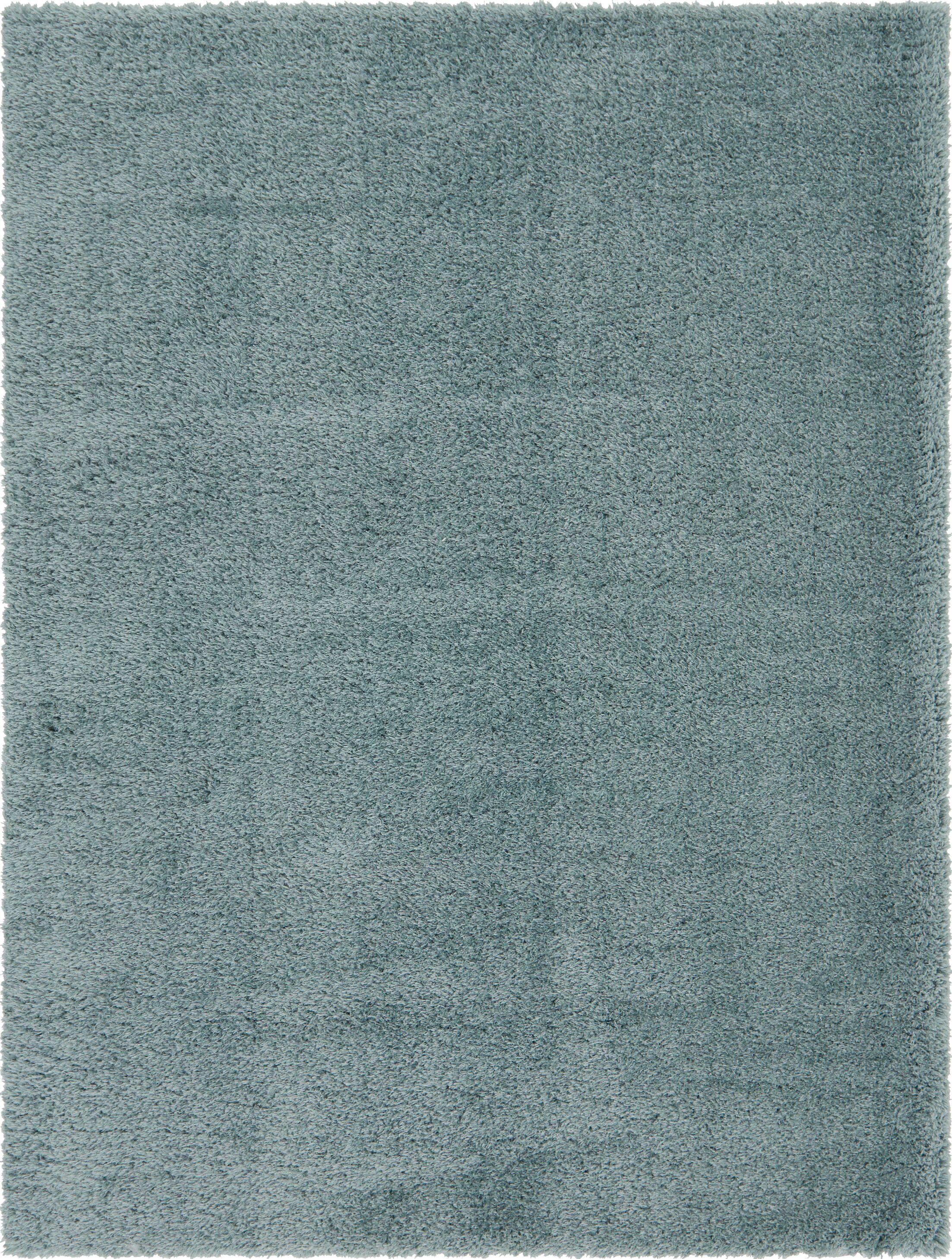 Blue Area Rug Rug Size: 9' x 12'