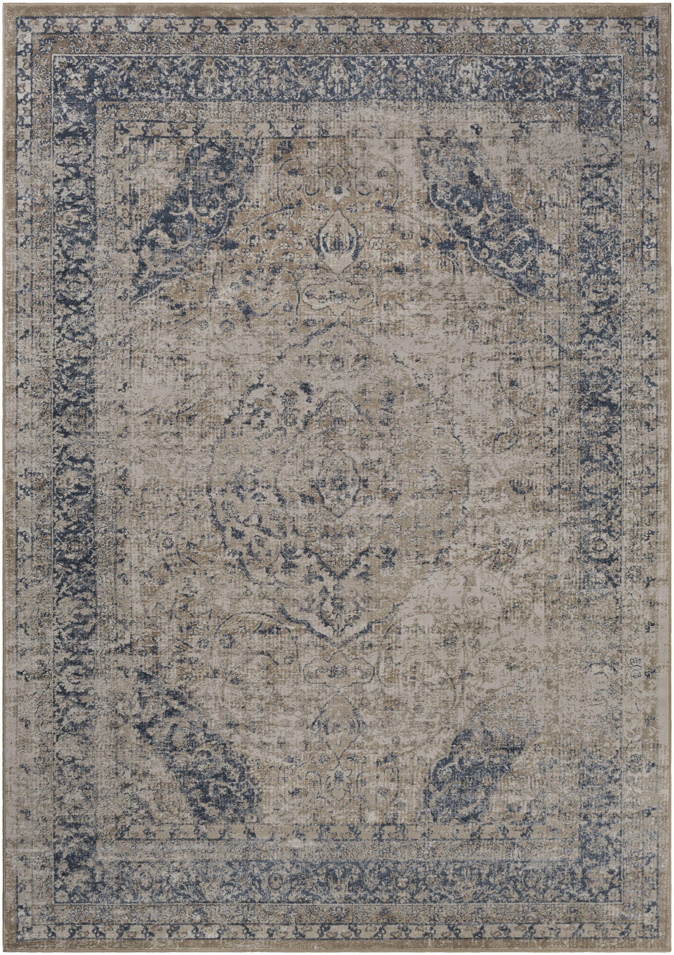 Barthe Beige/Khaki Area Rug Rug Size: Rectangle 6'7