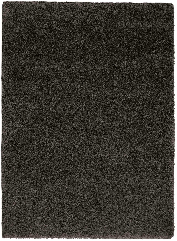 Parrish Dark Gray Area Rug Rug Size: Rectangle 6'7