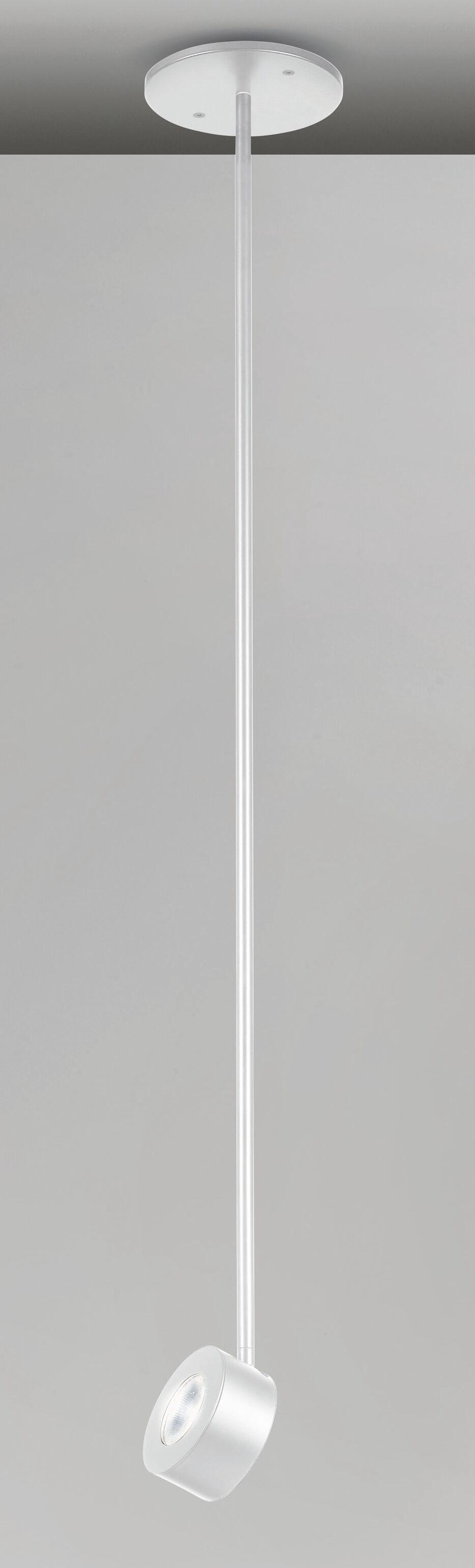 Favilla 1-Light Drum Pendant Finish: White Matte, Size: 10