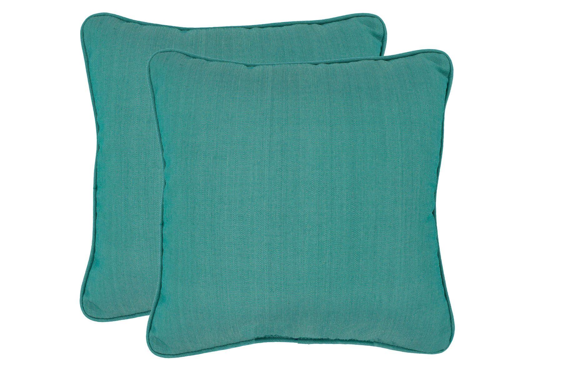 Paulino Outdoor Throw Pillow Color: Lake Blue
