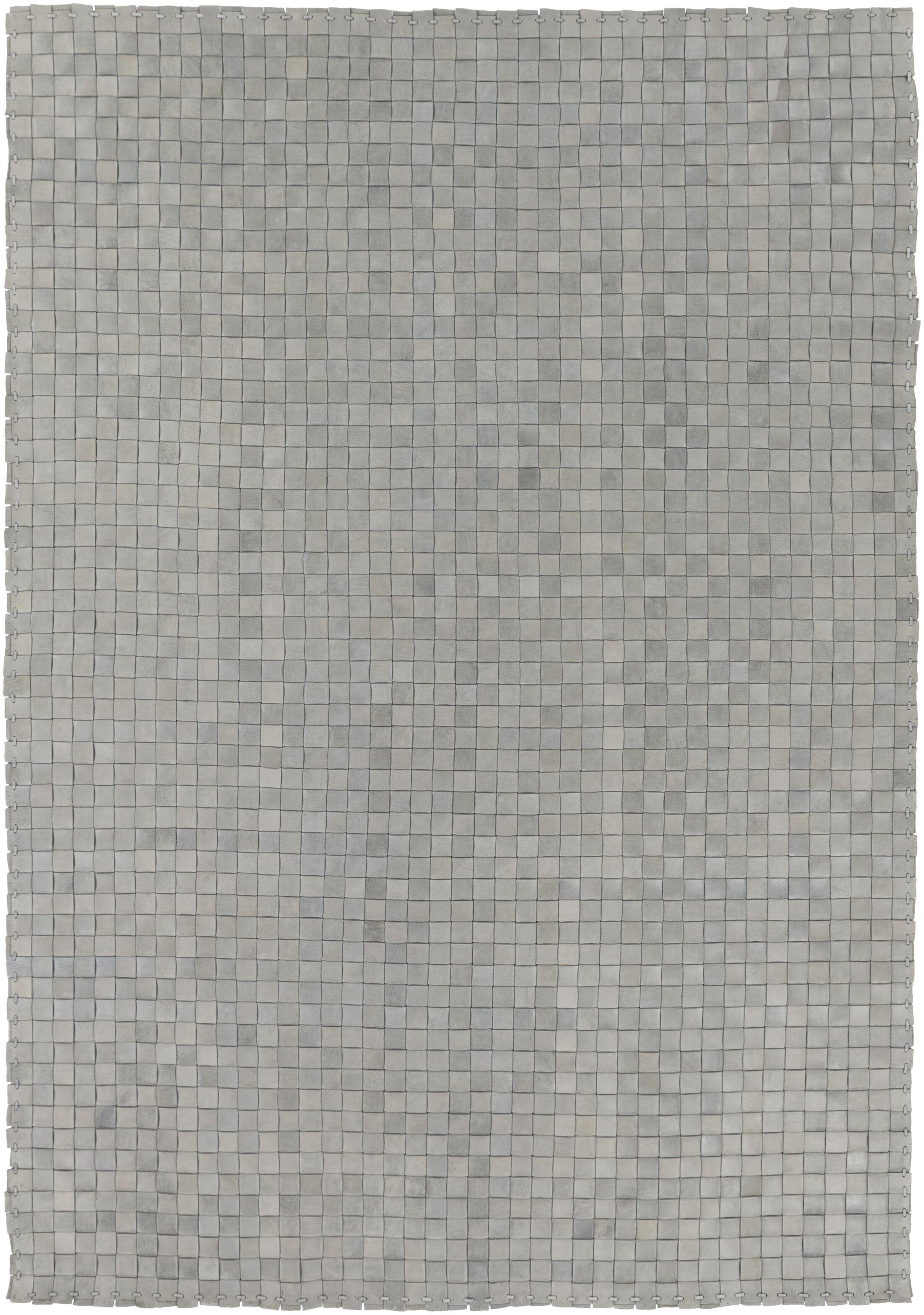 Taraji Hand Woven Gray Indoor/Outdoor Area Rug Rug Size: Rectangle 4' x 6'