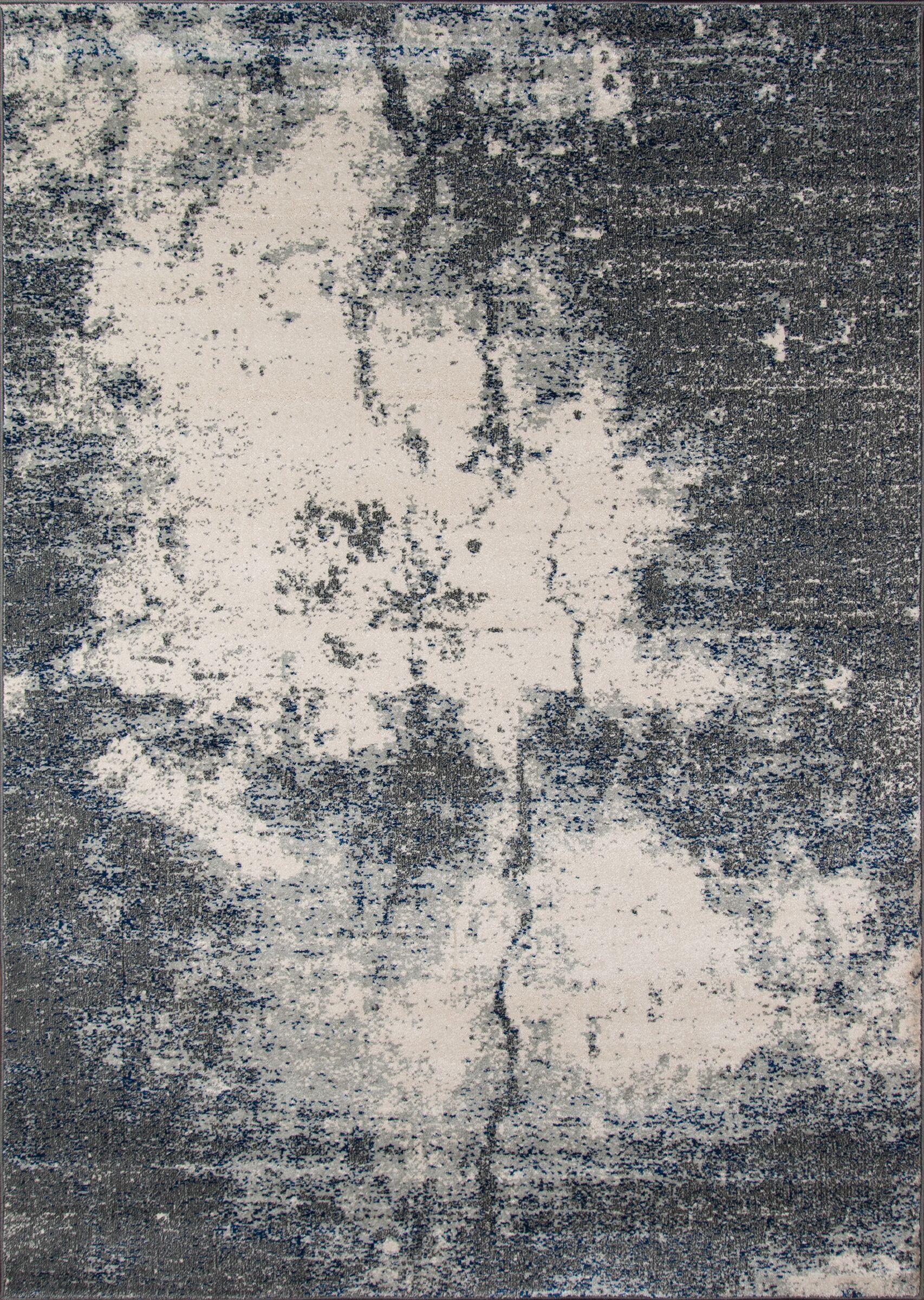 Silcox Gray Area Rug Rug Size: Rectangle 5'3