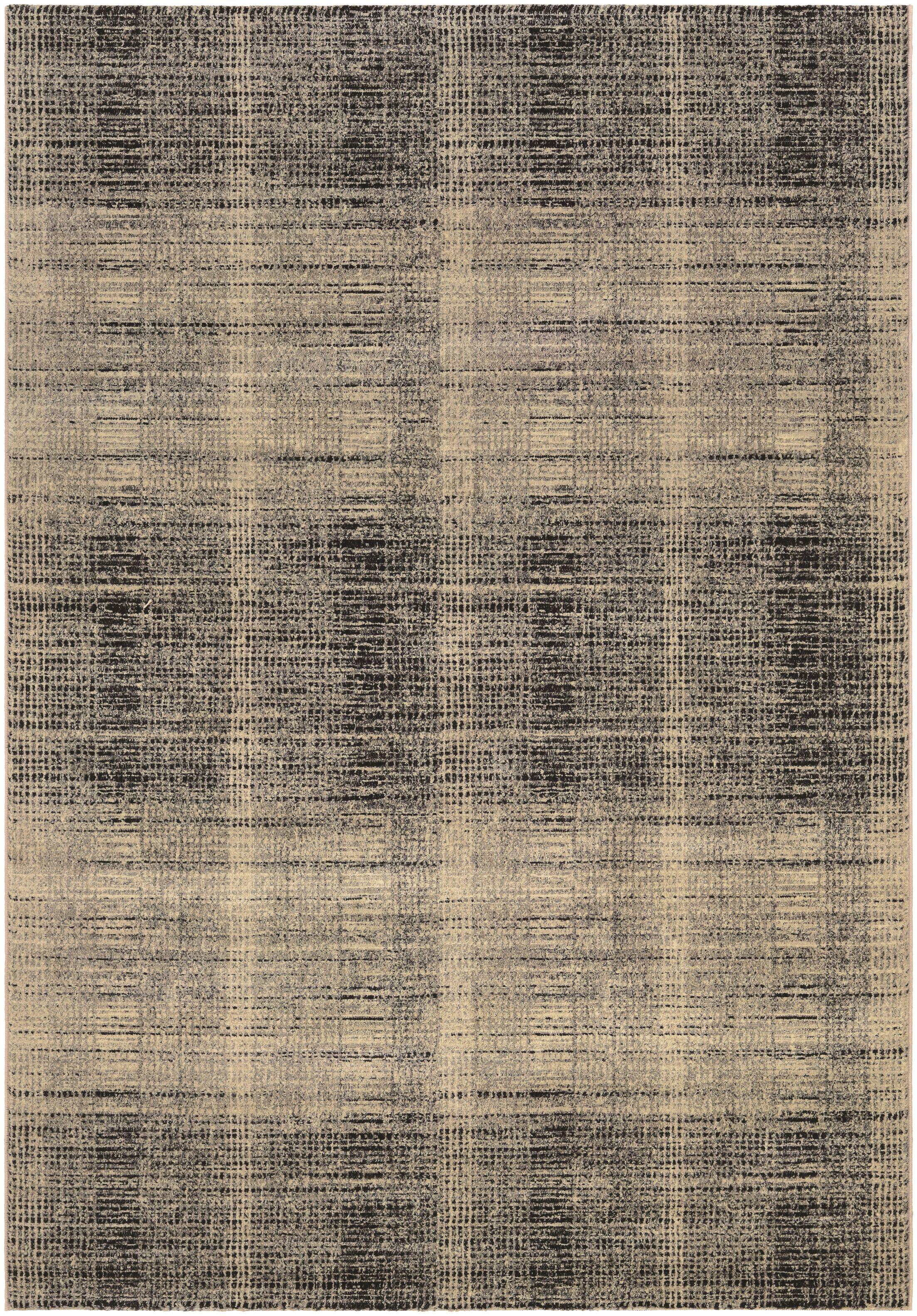 Covina Black/Gray Area Rug Rug Size: Rectangle 3'7