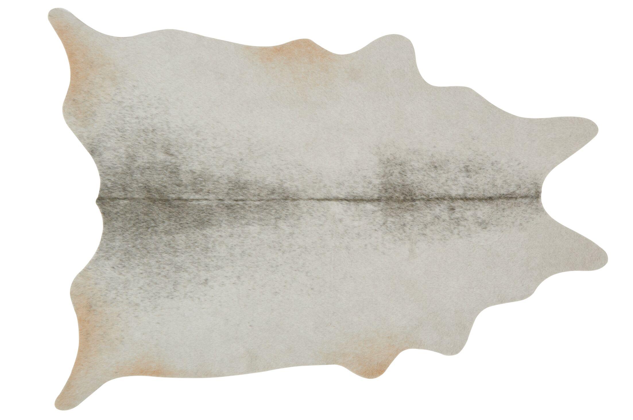 Kaci Silver/Grey Area Rug Rug Size: 6'2