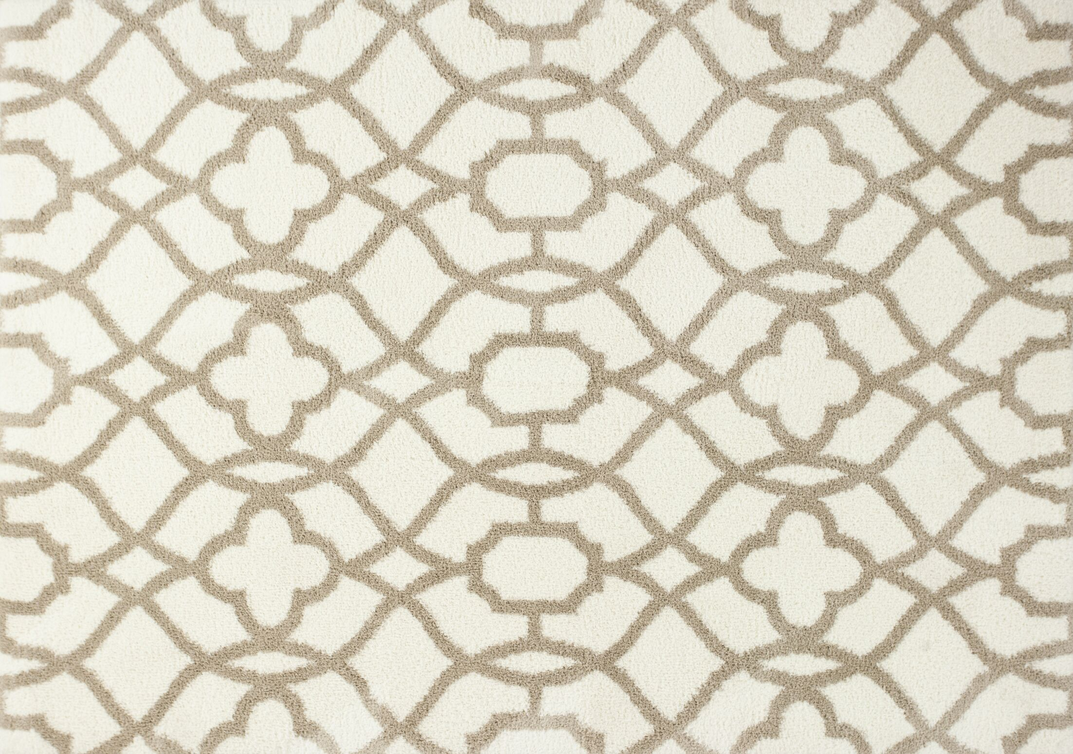 Annia Ivory/Beige Fancy Area Rug Rug Size: 7'10