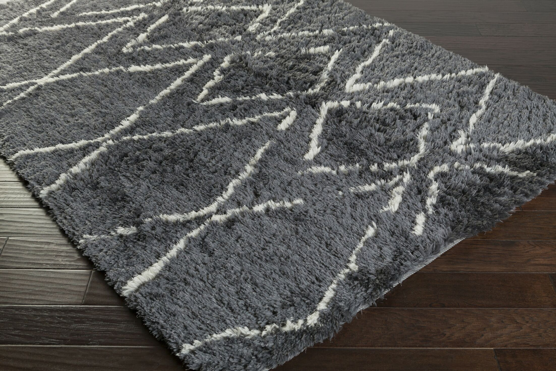 Leona Charcoal Area Rug Rug Size: Rectangle 8' x 10'