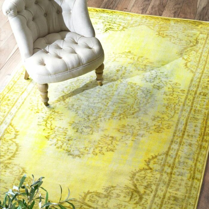 Scituate Yellow Area Rug Rug Size: Rectangle 4'11