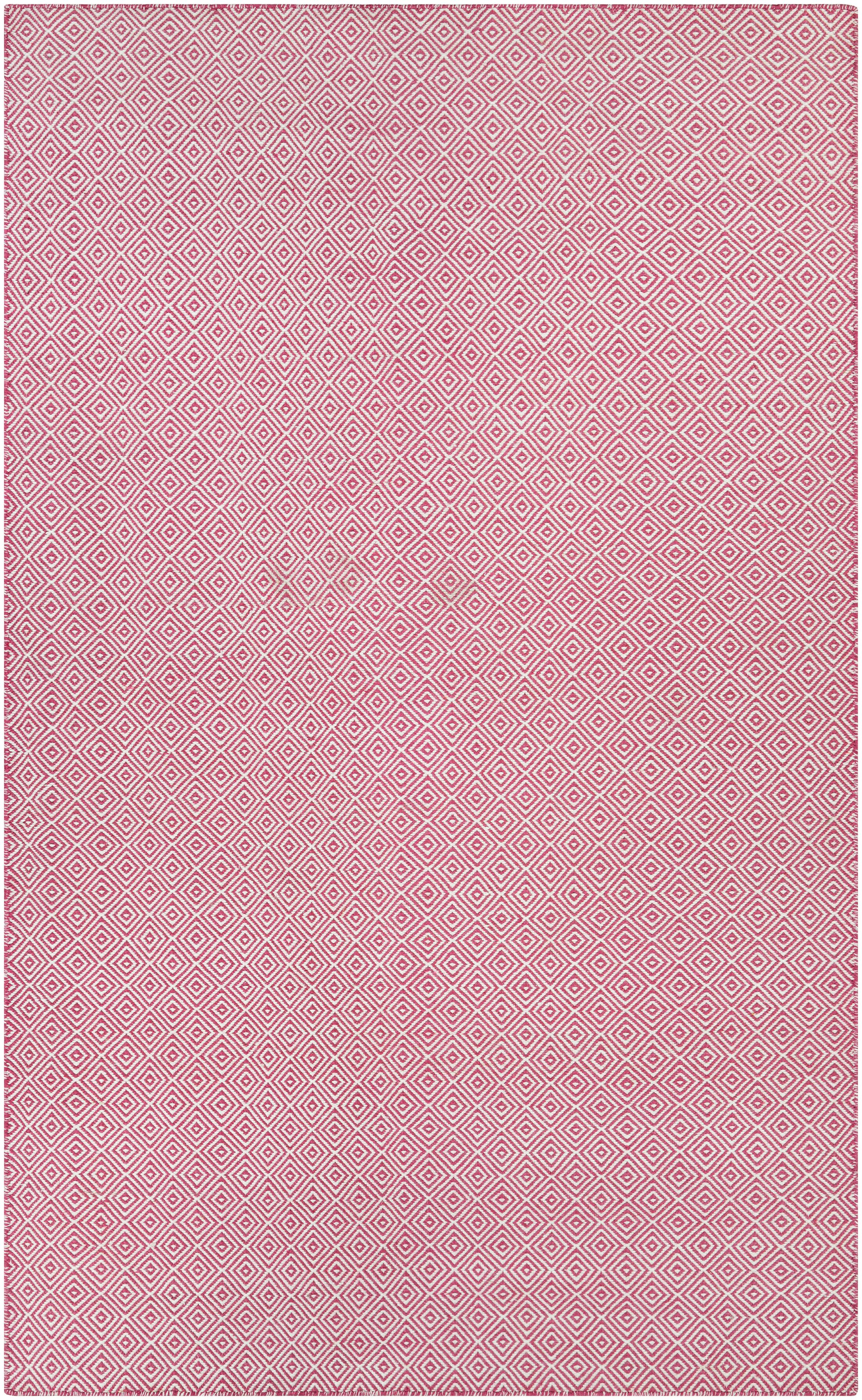 Alonso Hand-Woven Pink Indoor/Outdoor Area Rug Rug Size: Runner 2'3