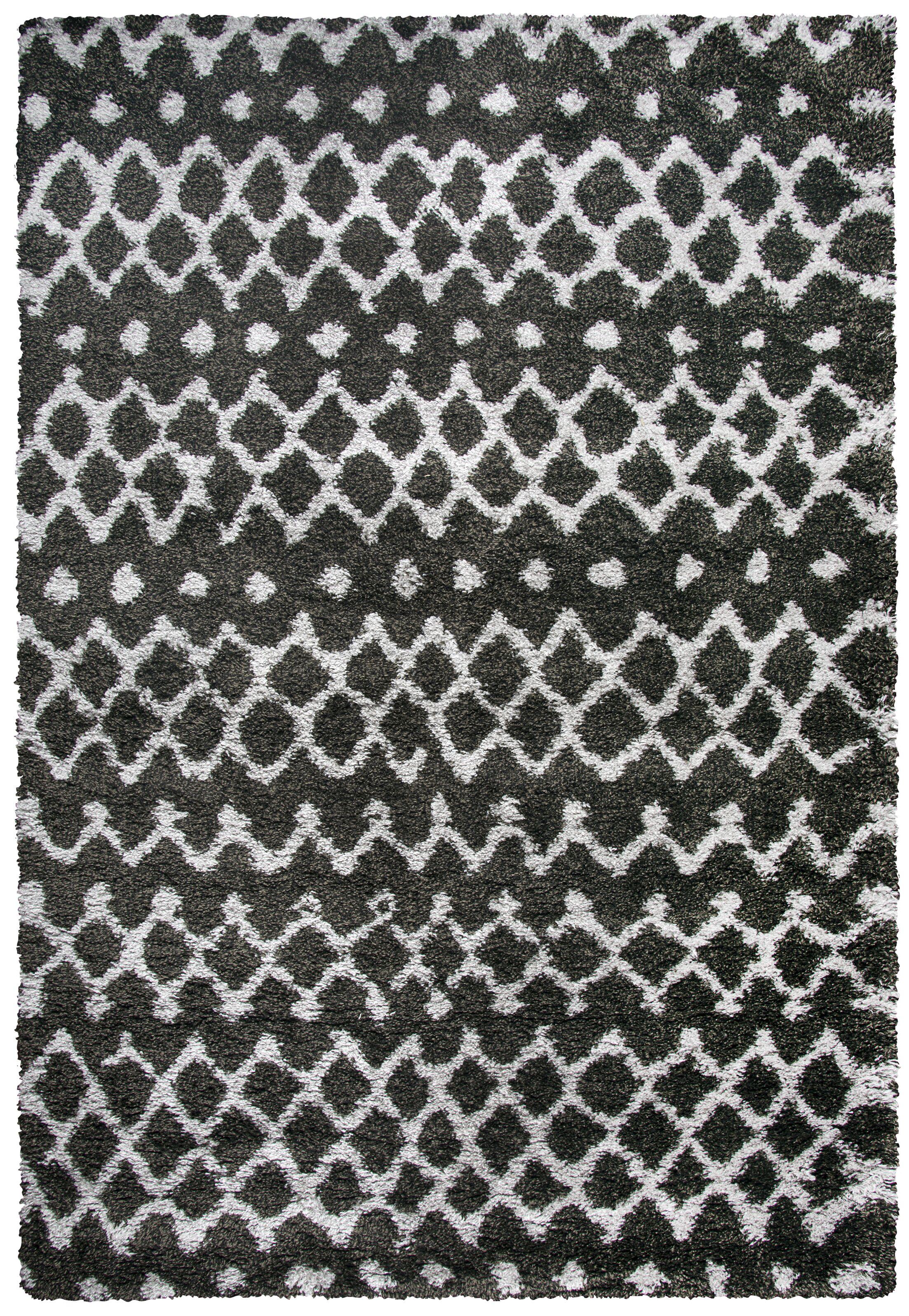 Matias Charocal Shag Area Rug Rug Size: Rectangle 7'10