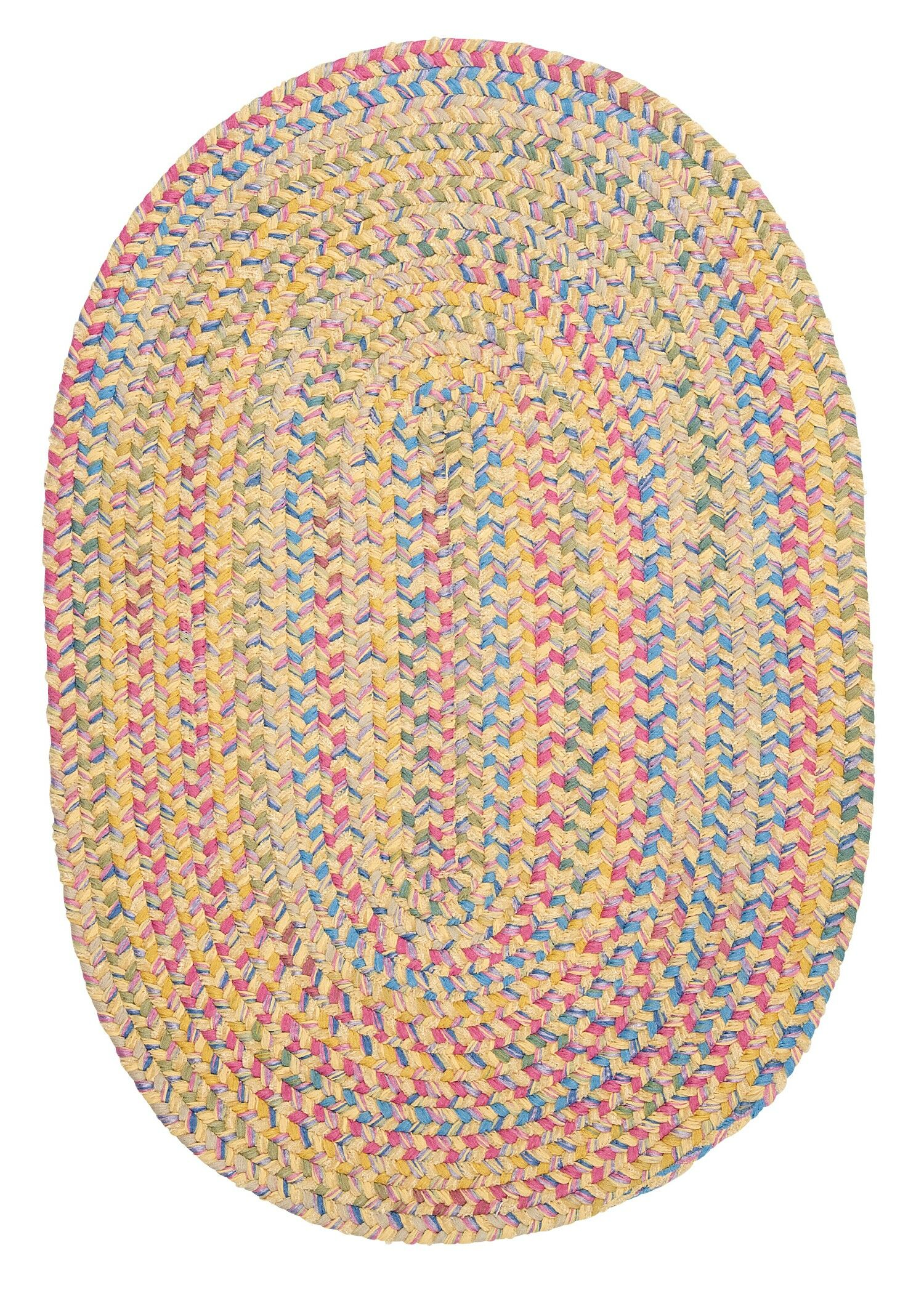 Oliver Braided Area Rug Rug Size: Oval 12' x 15'