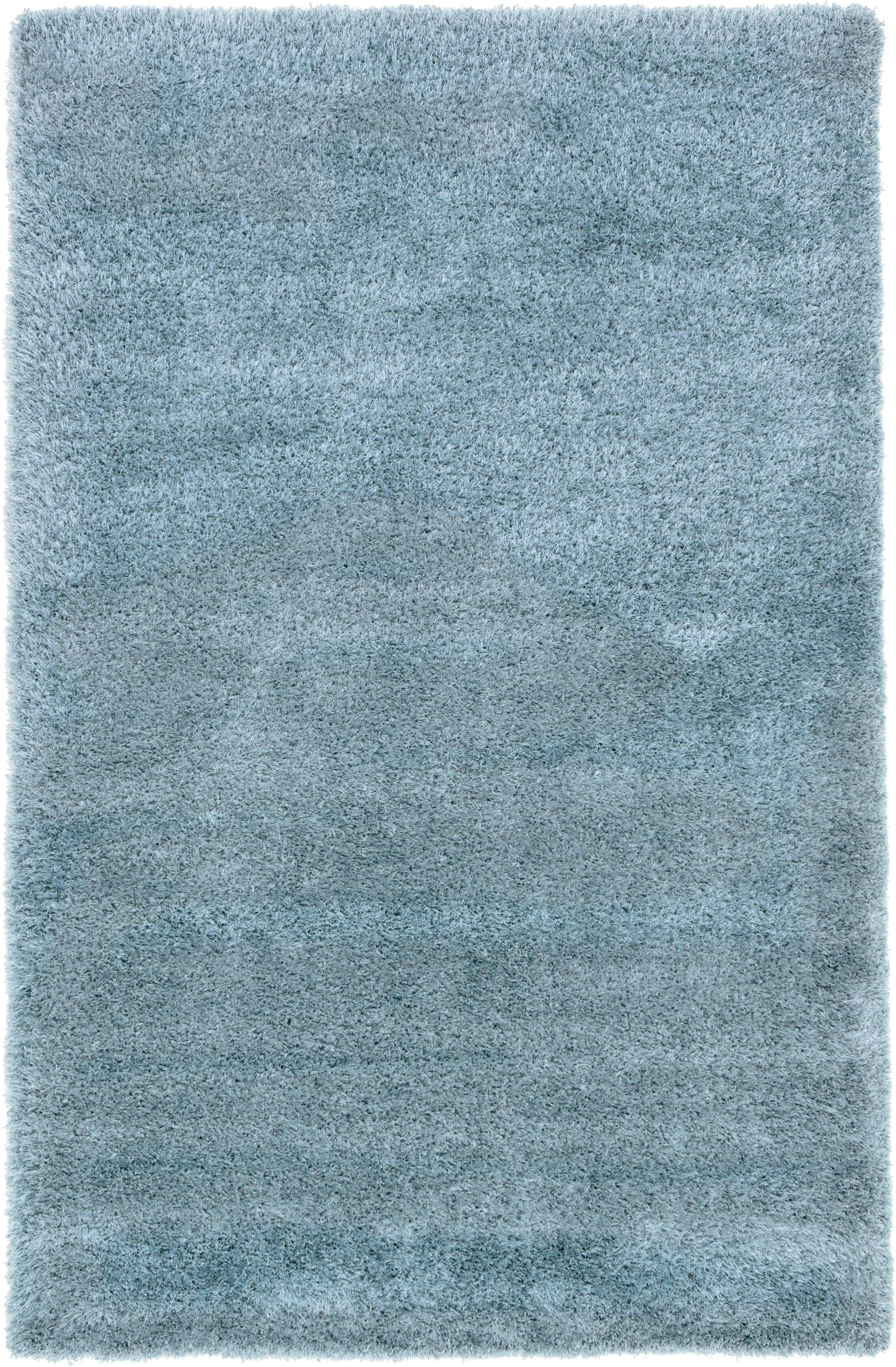 Evelyn Light Blue Area Rug Rug Size: Rectangle 5' x 8'