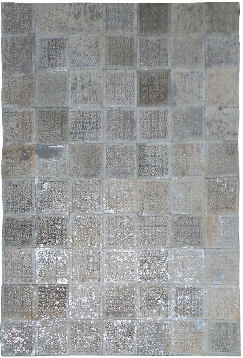 Silver Area Rug Rug Size: Rectangle 6' x 9'