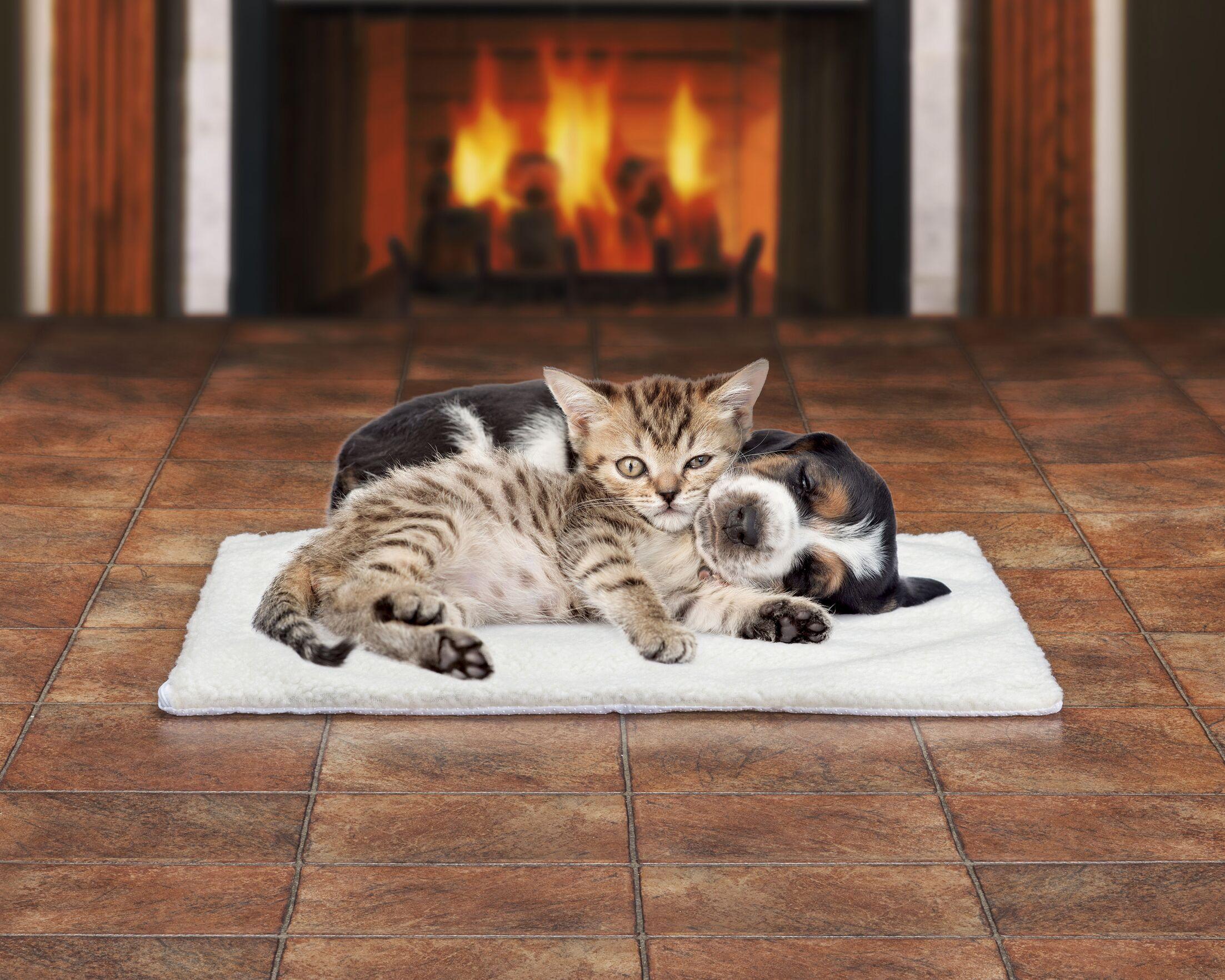 Brady Self Heating Pet Pad
