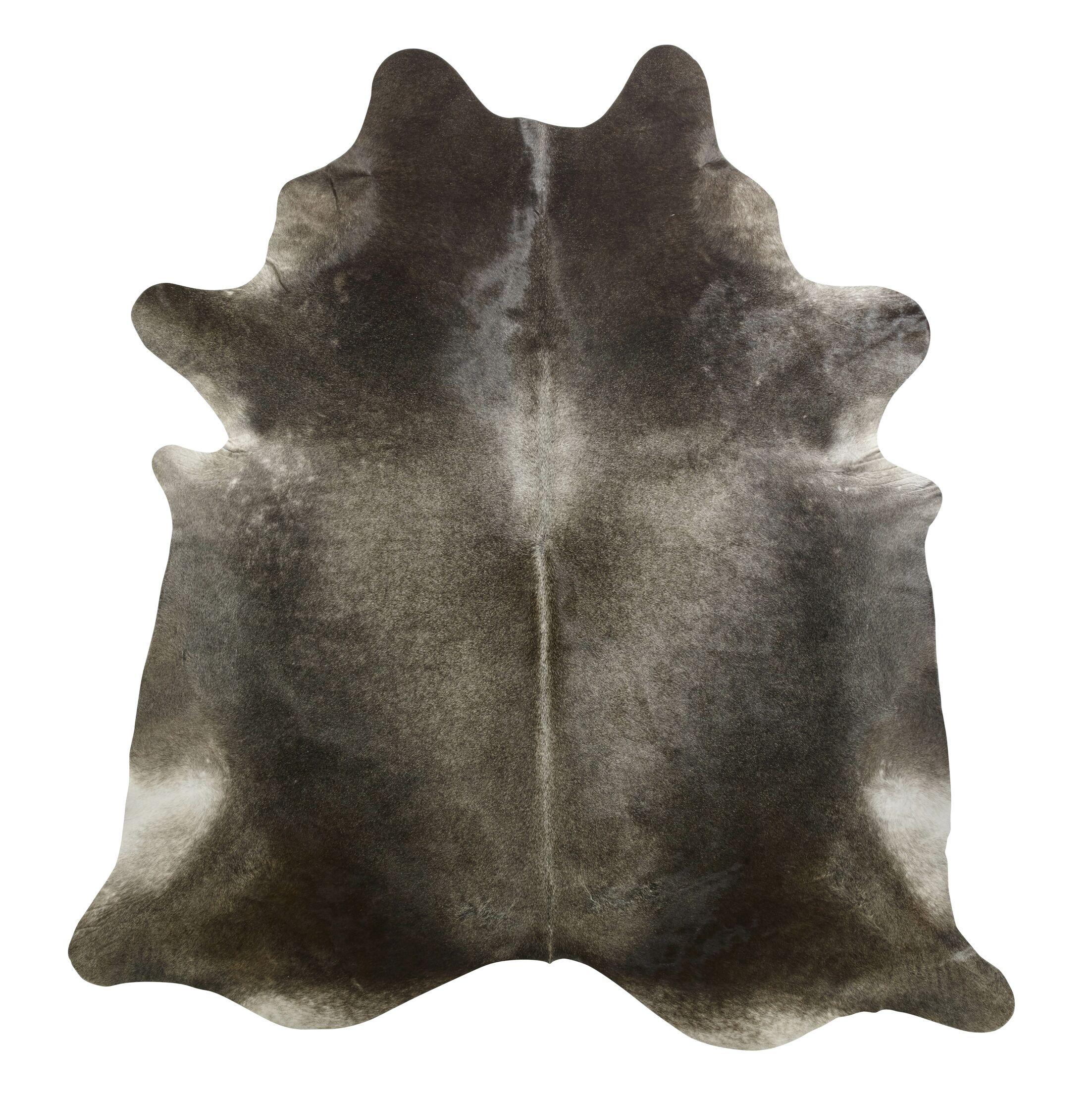 Gris Dark Brown/Ivory Area Rug Rug Size: Novelty 6'6