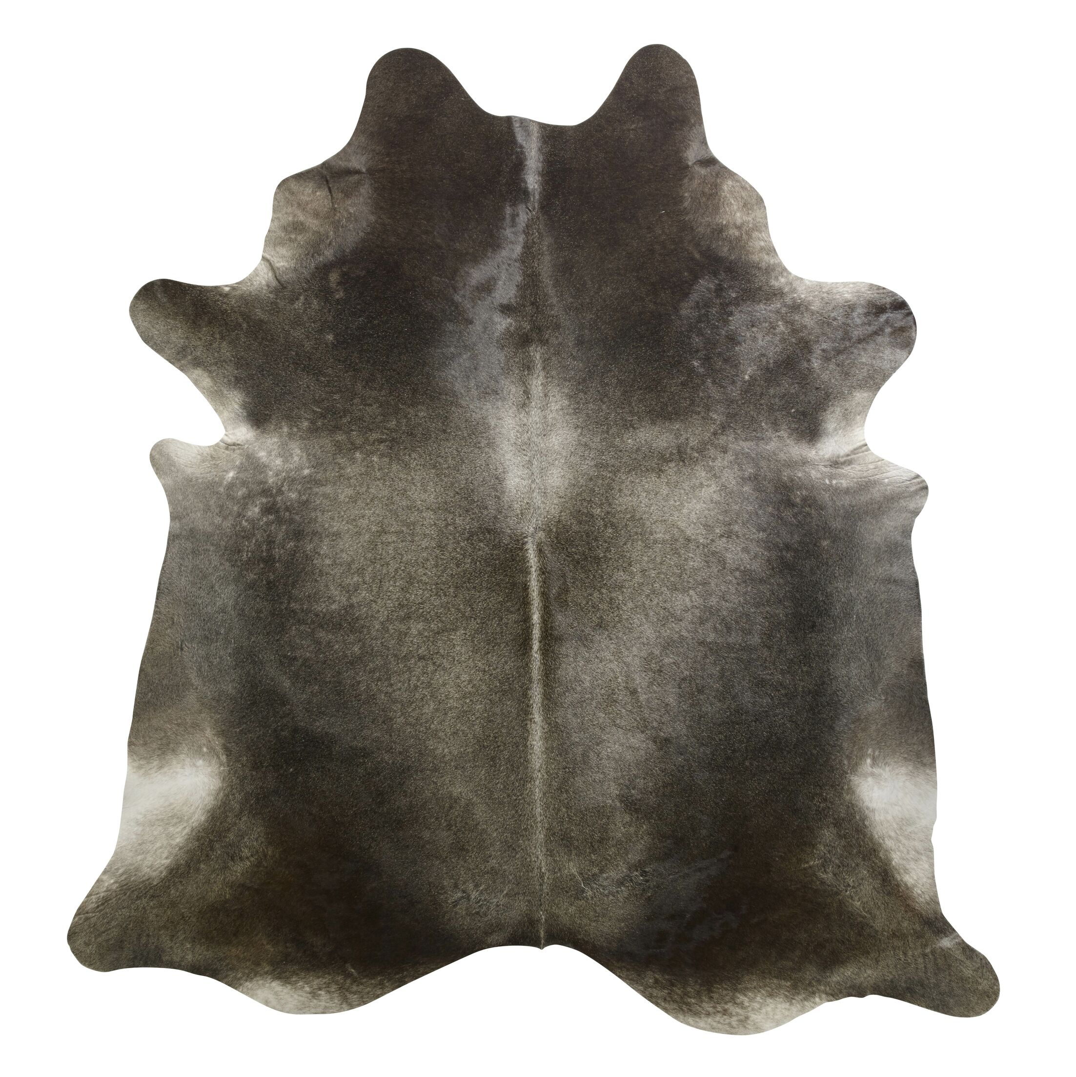 Gris Dark Brown/Ivory Area Rug Rug Size: Novelty 6' x 6'