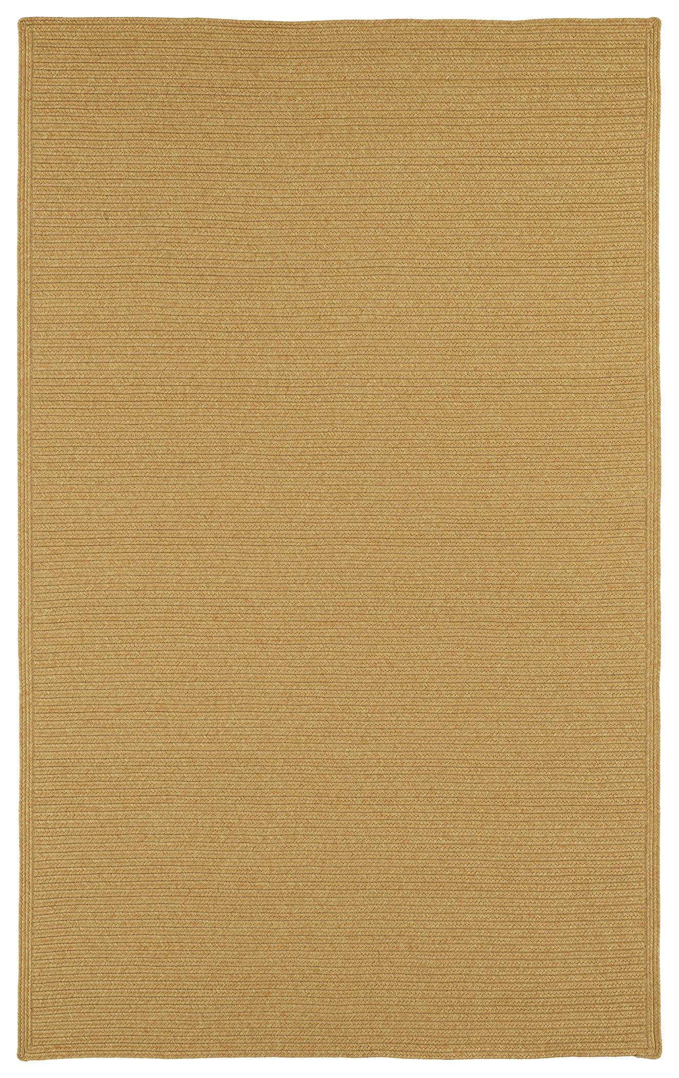 Josephine Pumpkin Indoor/Outdoor Area Rug Rug Size: Rectangle 5' x 8'