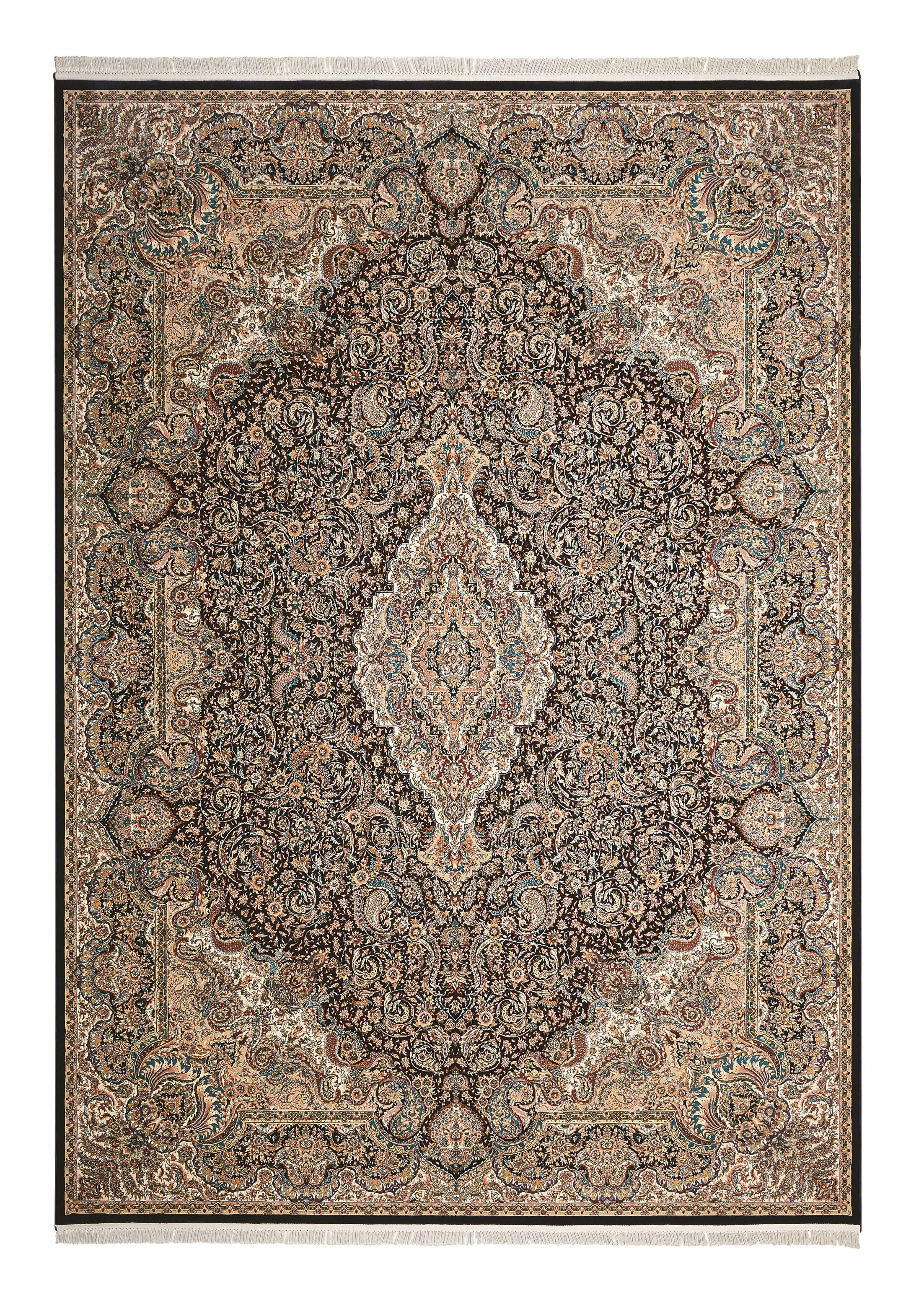 Catarina Brown/Navy Area Rug Rug Size: Rectangle 3'11