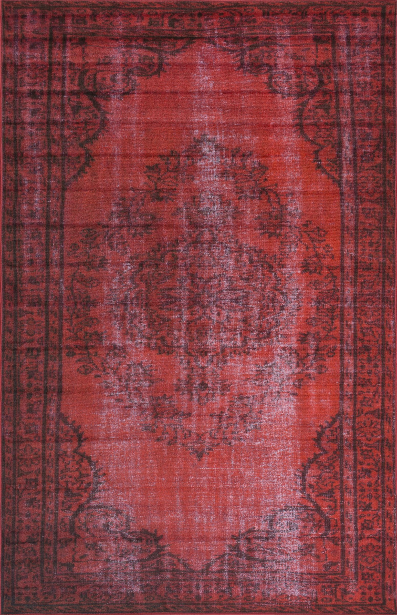 Seekonk Red Area Rug Rug Size: Rectangle 4' x 6'