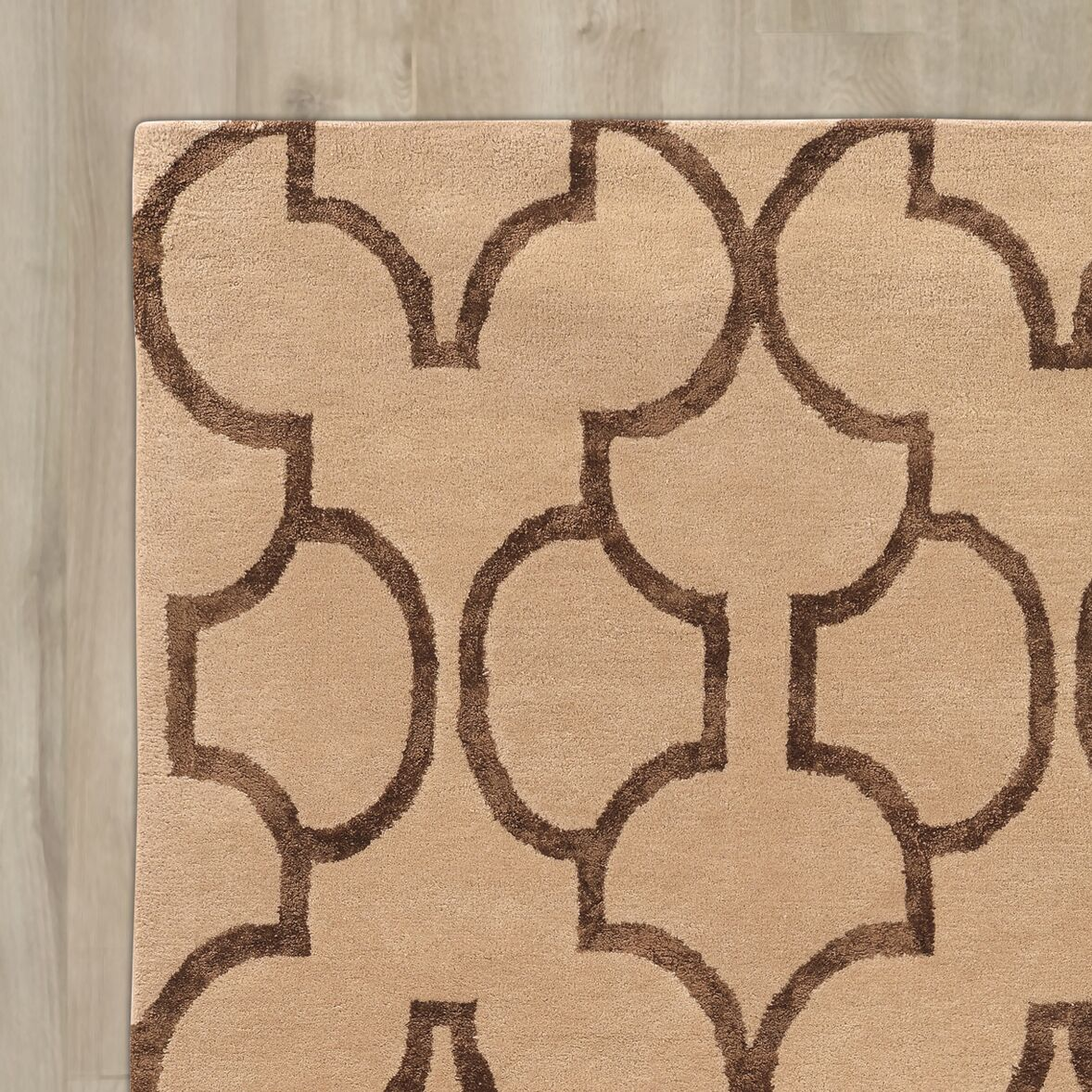 Leone Hand-Tufted Beige/Brown Area Rug Rug Size: Rectangle 5' x 8'