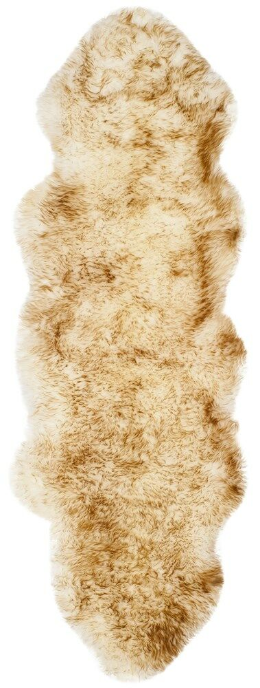 Dax Off White / Coco Brown Area Rug Rug Size: Runner 2' x 6'