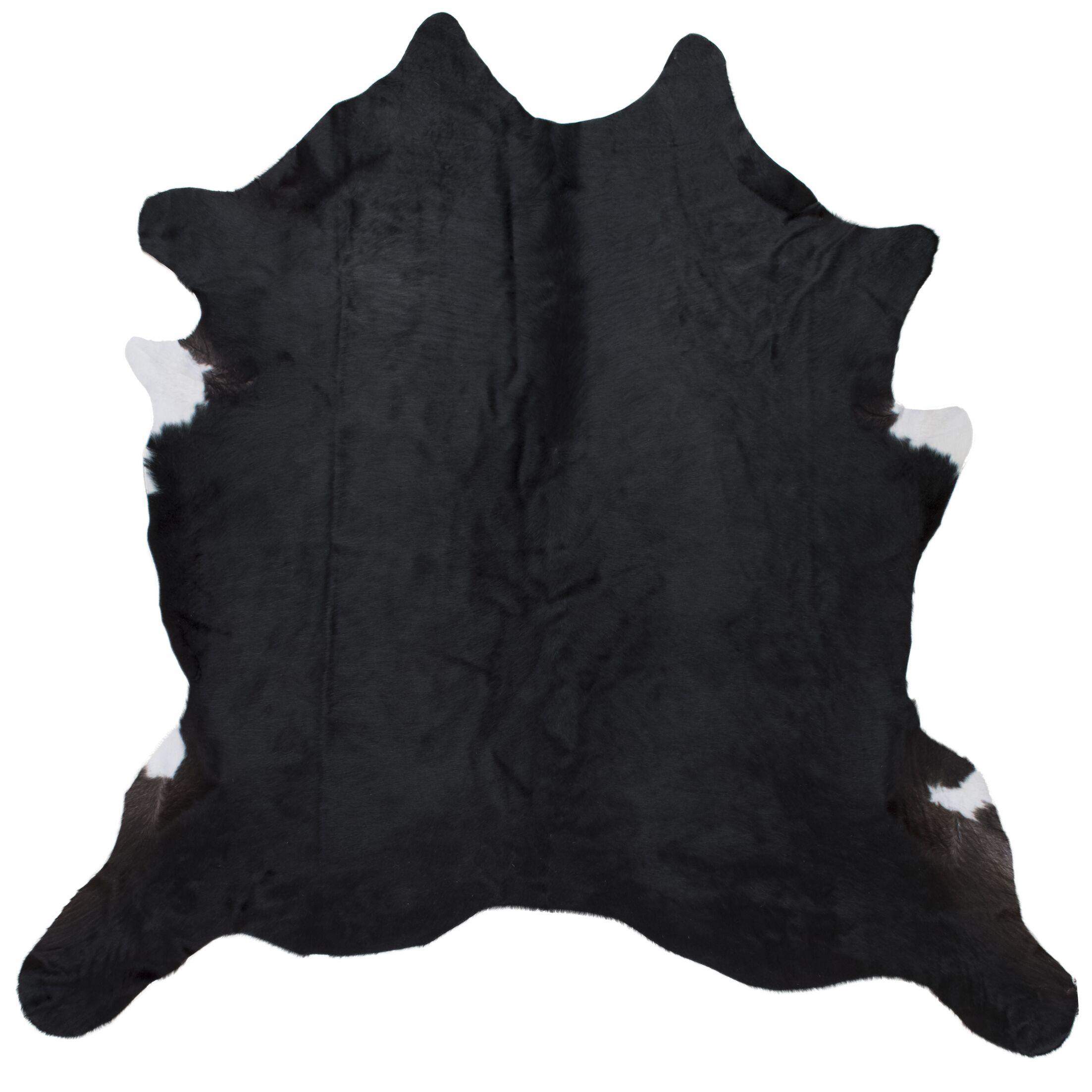 Blosse Hand-Woven Black Indoor Area Rug