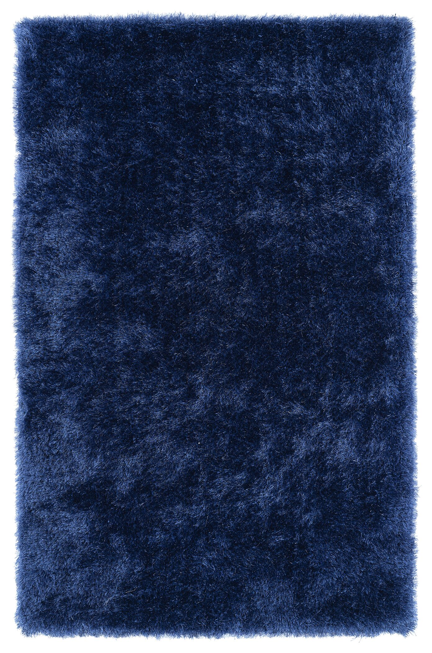 Selman Denim Area Rug Rug Size: Rectangle 5' x 7'