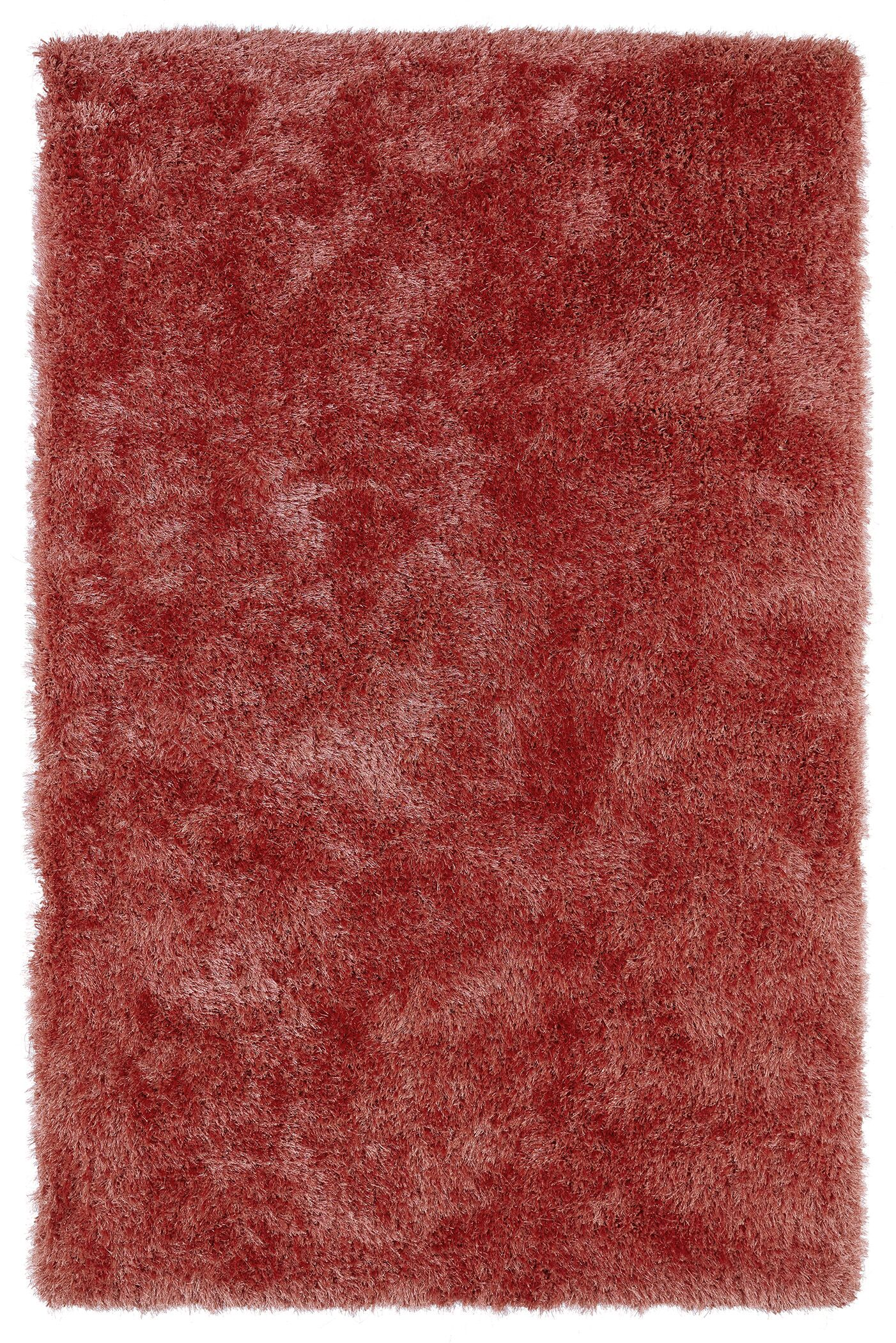 Caine Coral Area Rug Rug Size: Rectangle 3' x 5'