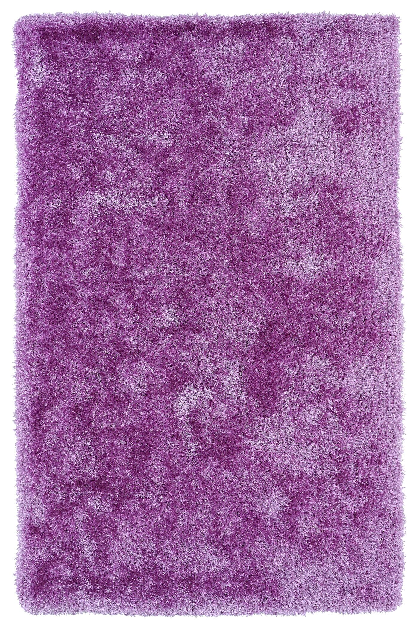 Caine Lilac Area Rug Rug Size: Rectangle 5' x 7'