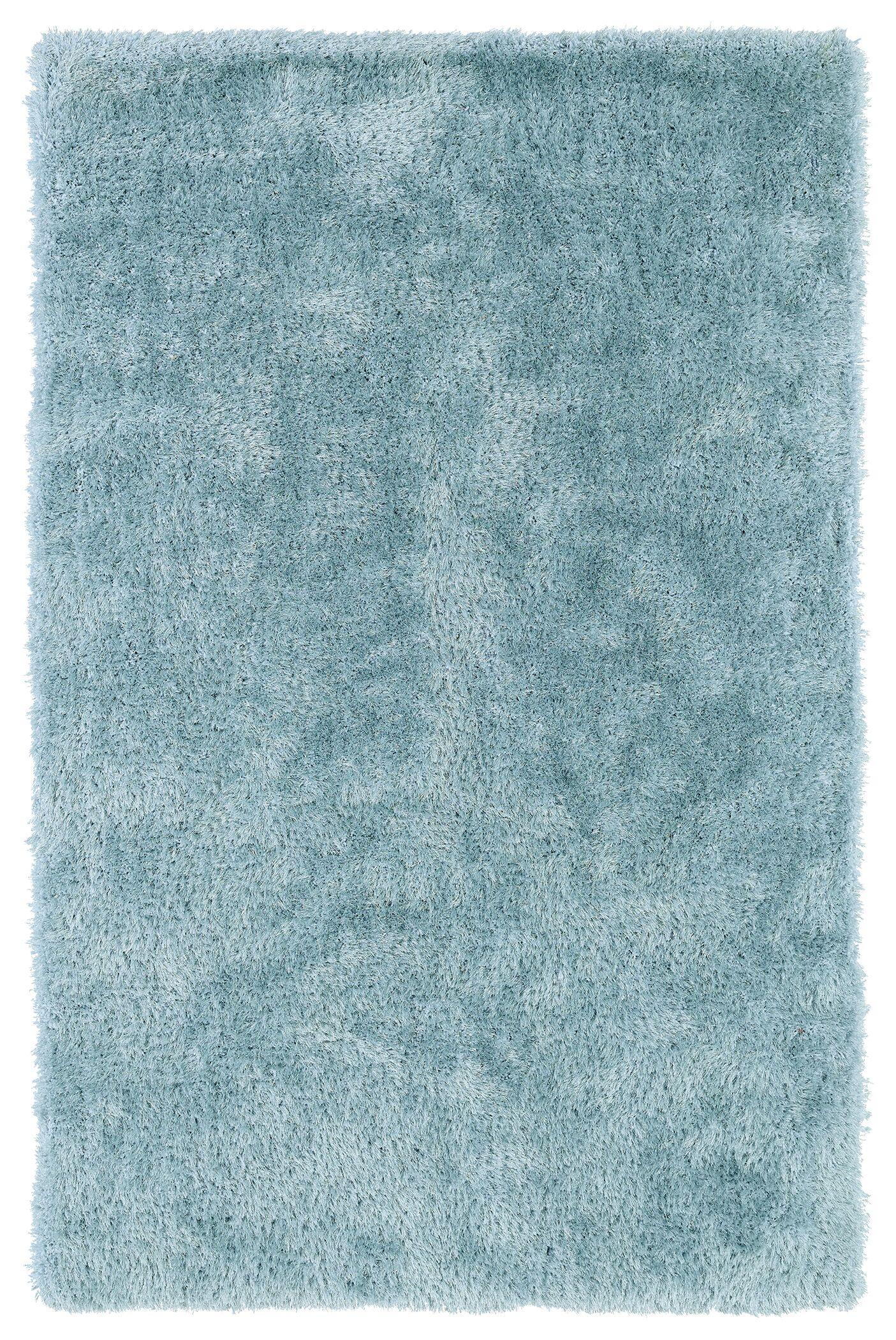 Selman Light Blue Area Rug Rug Size: Rectangle 5' x 7'