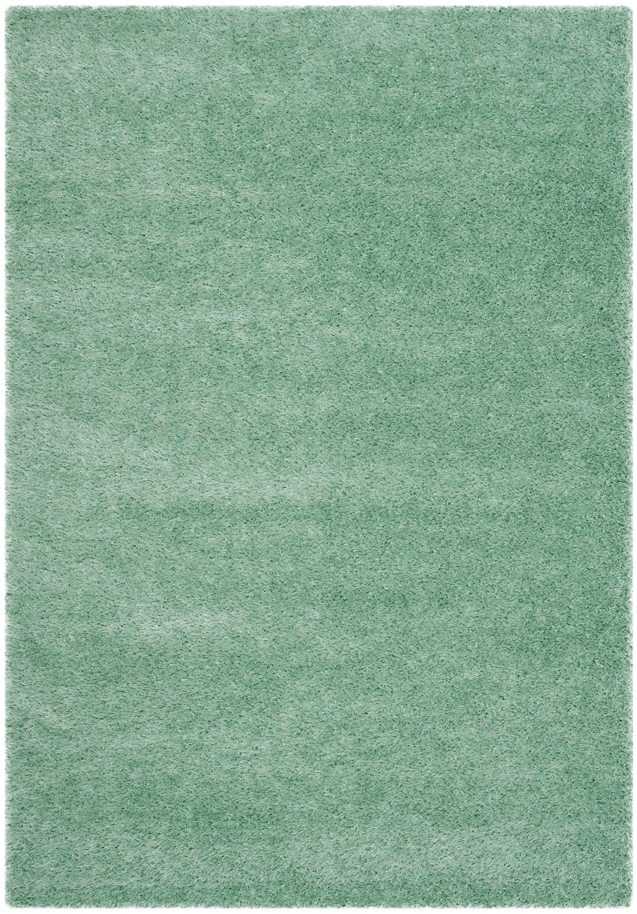Davey Teal Rug Rug Size: Rectangle 5'1