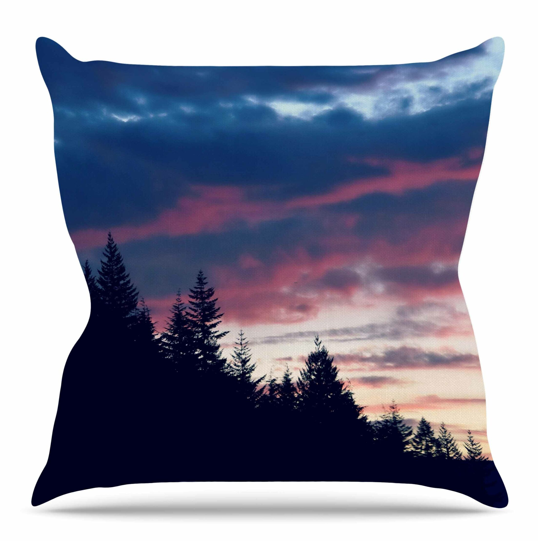 Go on Adventures by Robin Dickenson Throw Pillow Size: 26