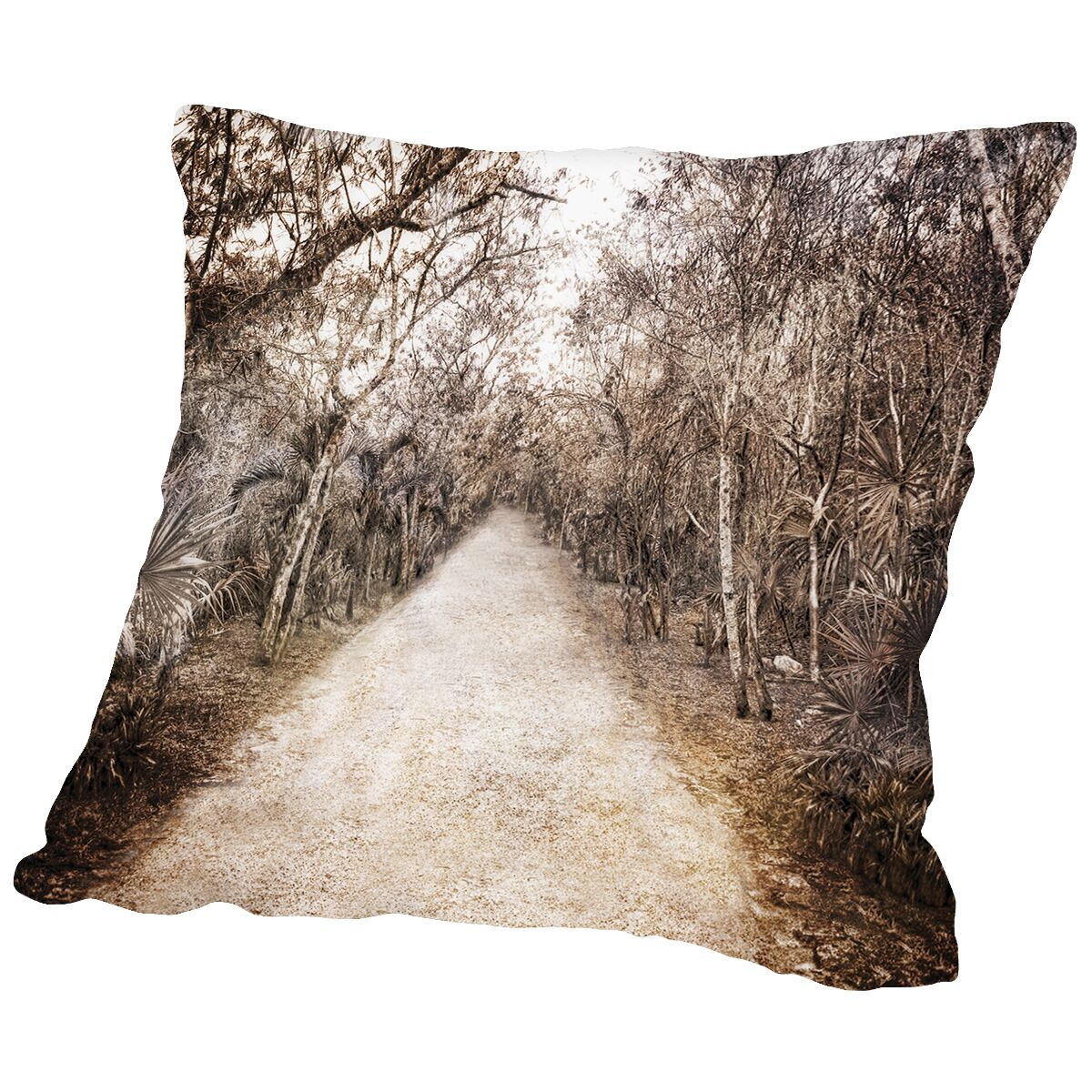 Walk In Playa Mexico Throw Pillow Size: 20