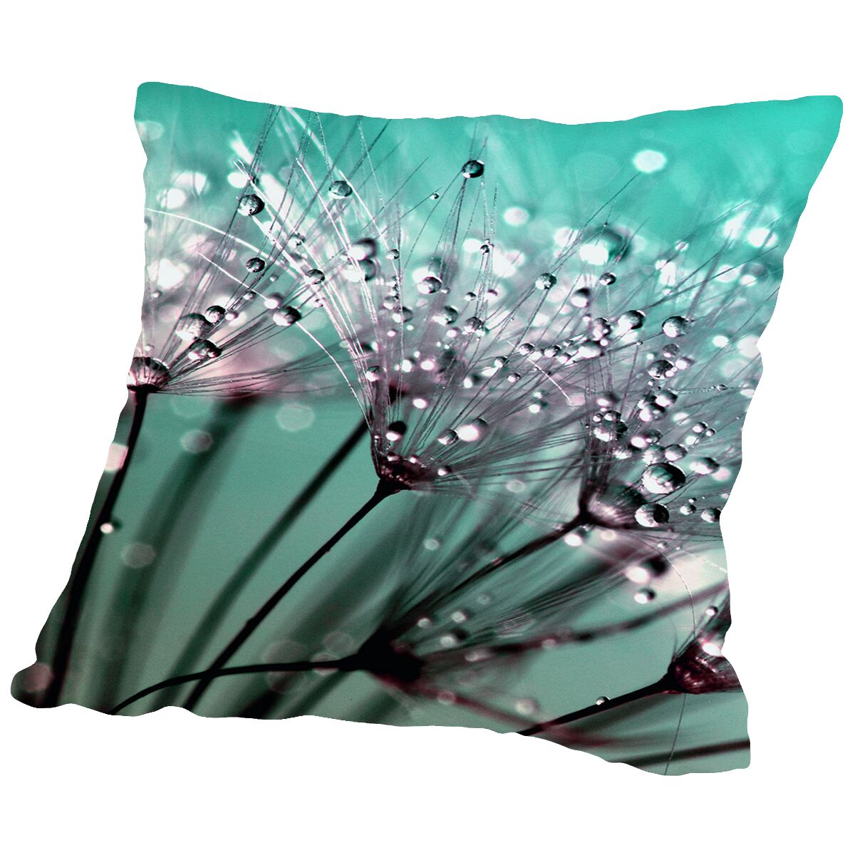 Dandelion Flower With Water Drops Throw Pillow Size: 14