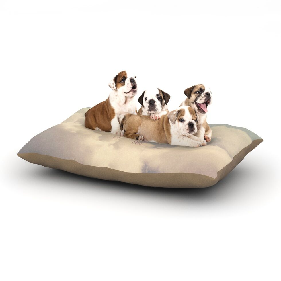 Rachel Burbee 'Dream of Me' Dog Pillow with Fleece Cozy Top Size: Small (40