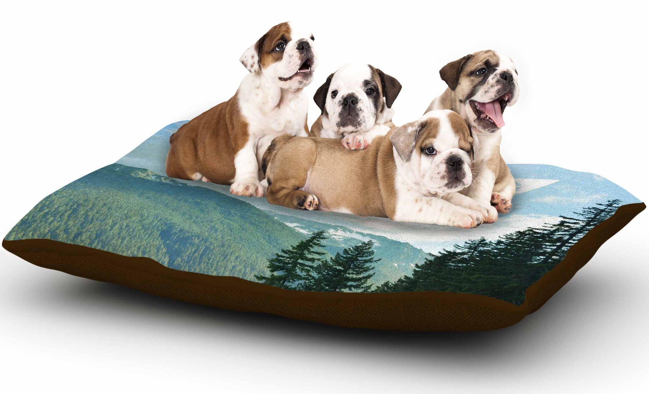 Robin Dickinson 'Adventure Beckons' Nature Landscape Dog Pillow with Fleece Cozy Top